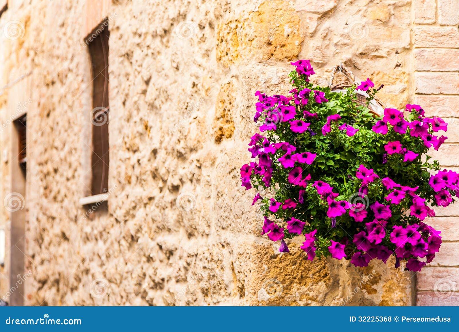 Toscaanse bloemen royalty vrije stock foto 39 s afbeelding 32225368 for Decor ingang