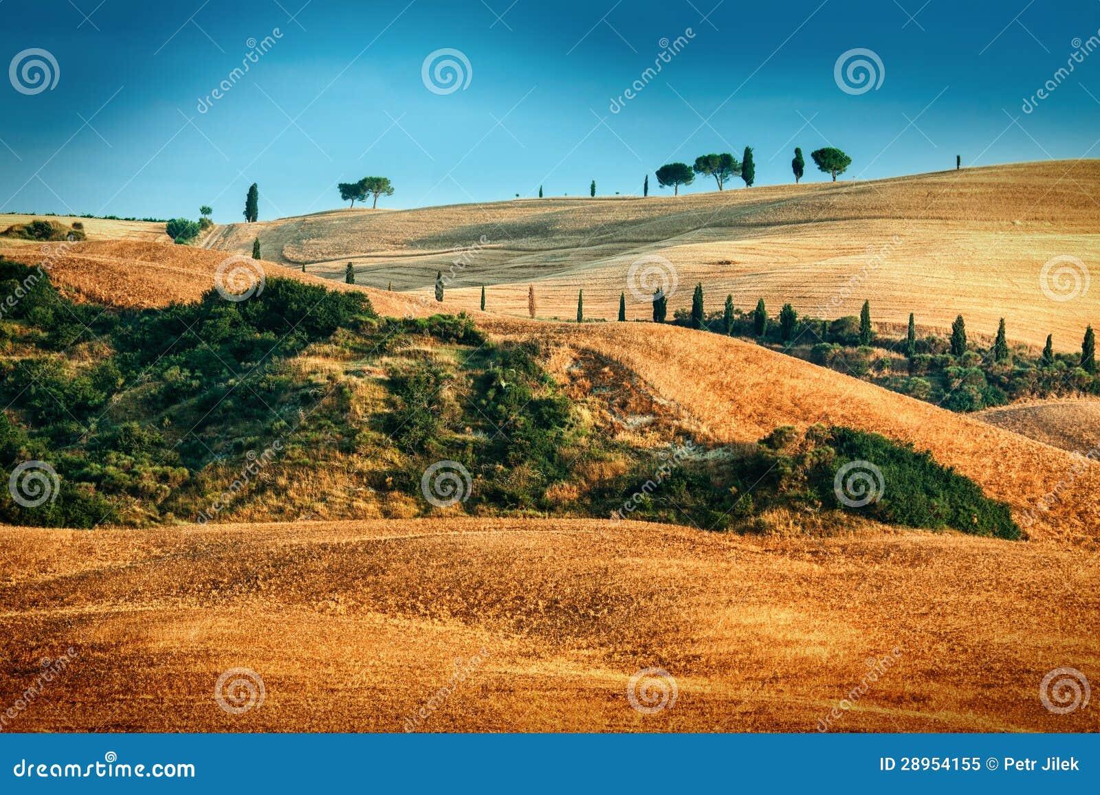 Toskanka krajobraz w lato czasie