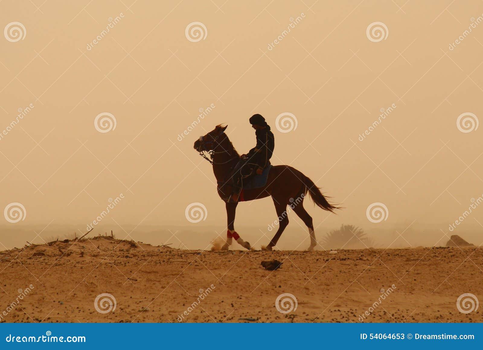 Touareg, das über das Sahara wandert