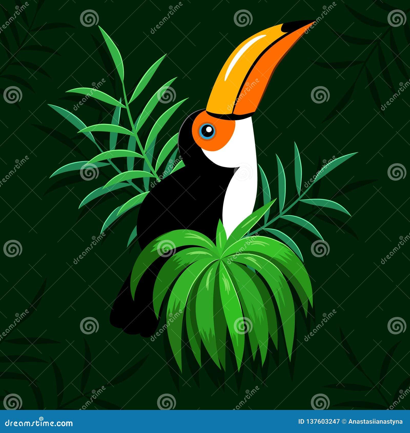 Toucan鸟和热带叶子