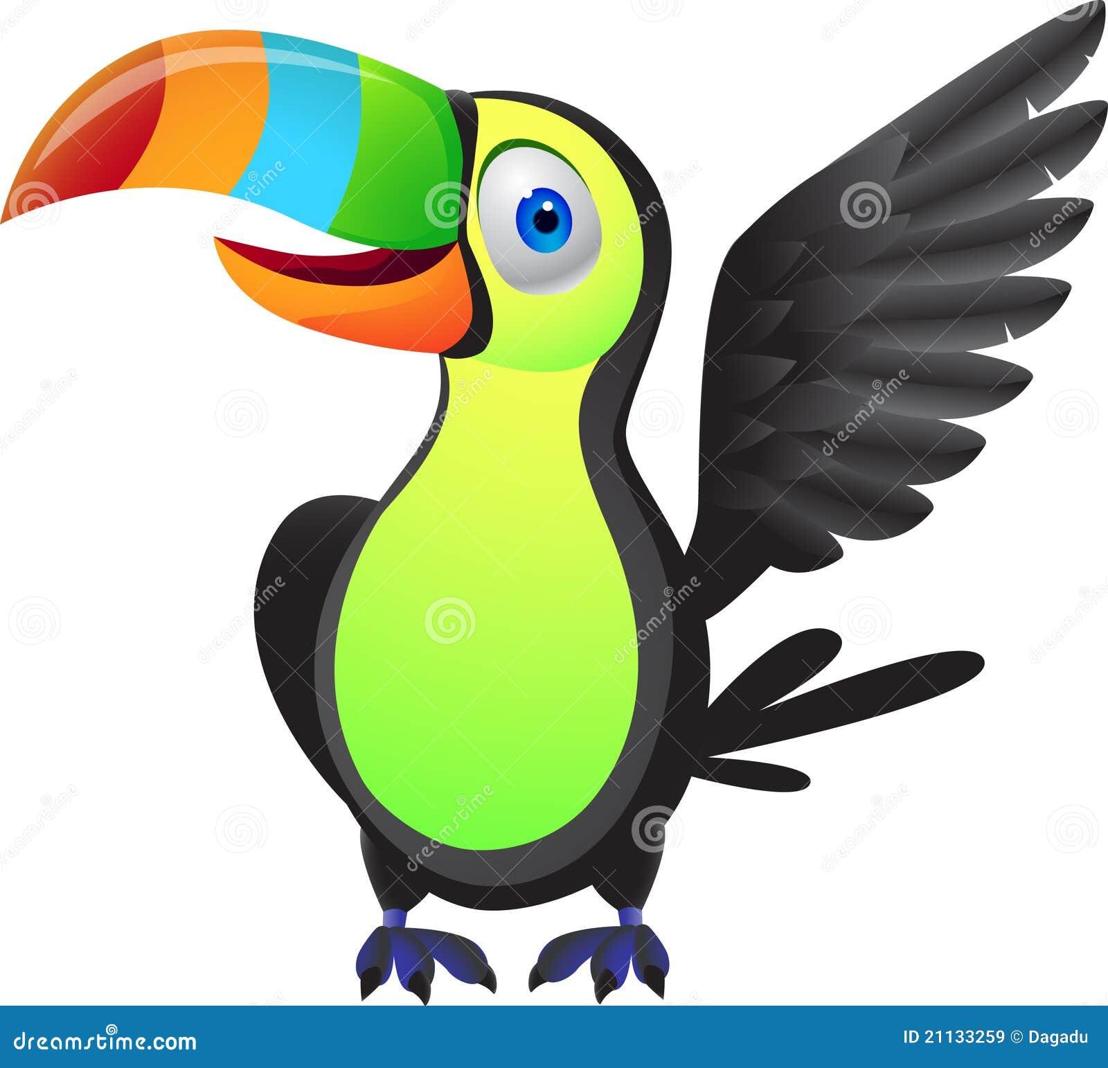 toucan bird stock vector illustration of exotic park