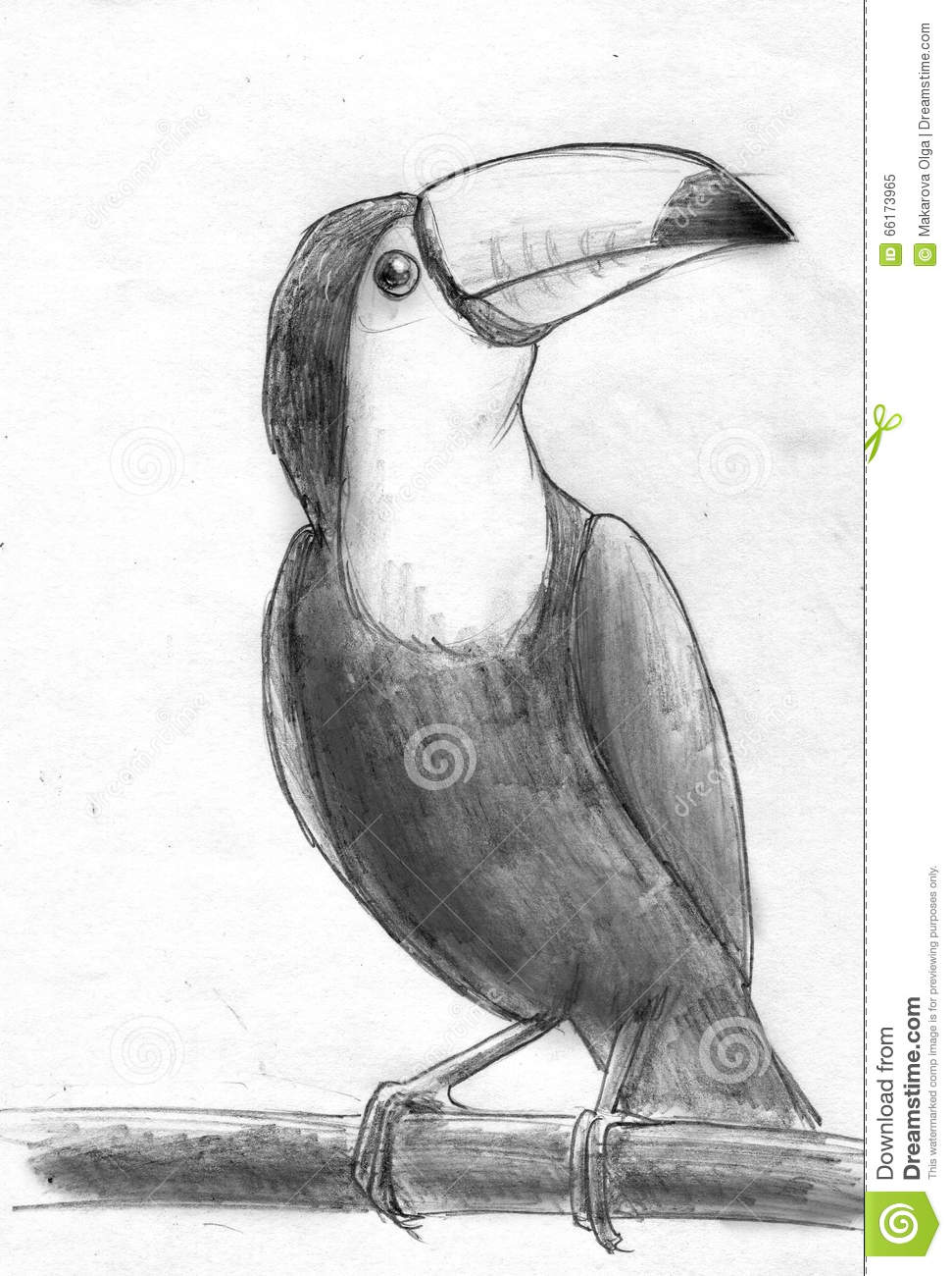 Bird pencil sketch stock illustrations 3156 bird pencil sketch stock illustrations vectors clipart dreamstime