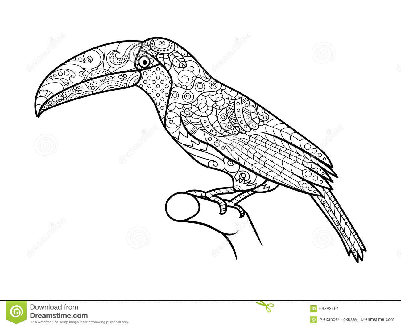 toucan coloring book adults vector bird illustration anti stress adult zentangle style black white lines lace