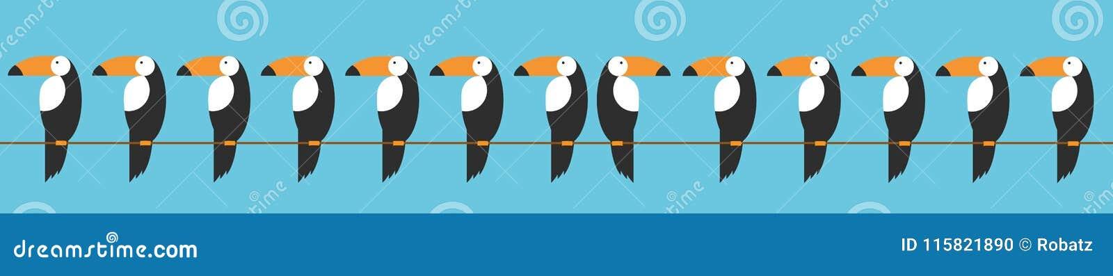 Toucans集合象 toucan传染媒介象的动画片例证网的 动物关于行为的变化的概念用一个讽刺方式