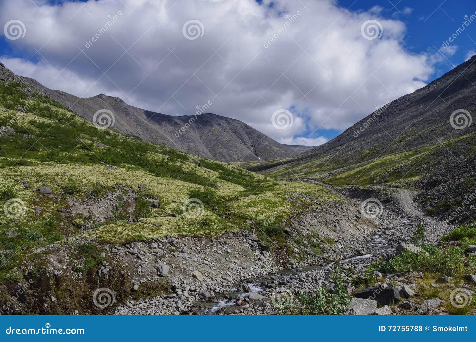 Toundra de montagne avec des mousses et des roches couvertes de lichens, montagnes de Hibiny au-dessus du cercle arctique, pénins