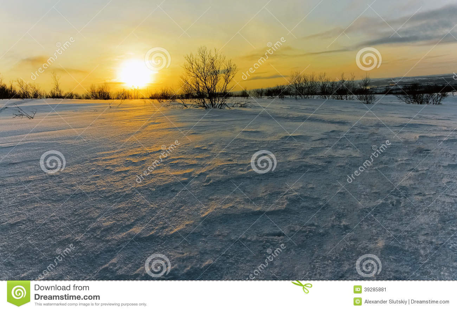 Toundra en hiver
