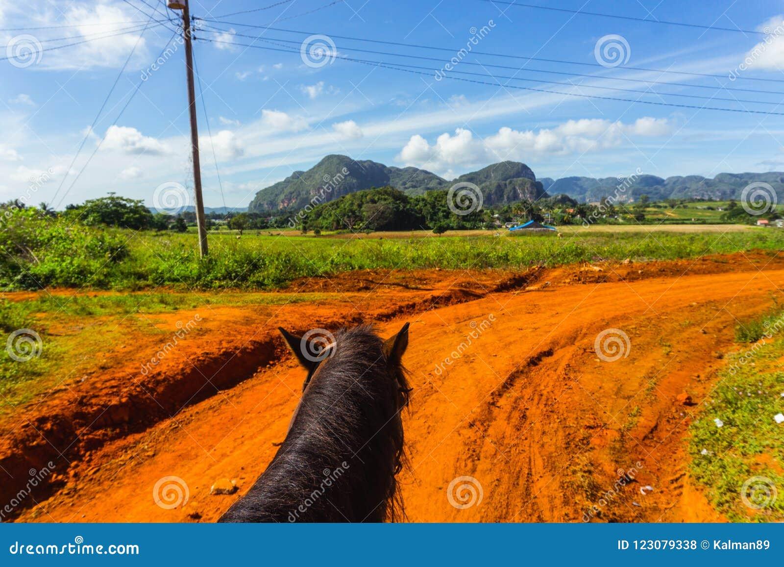 Tour de cheval au Cuba Campagne de Vinales