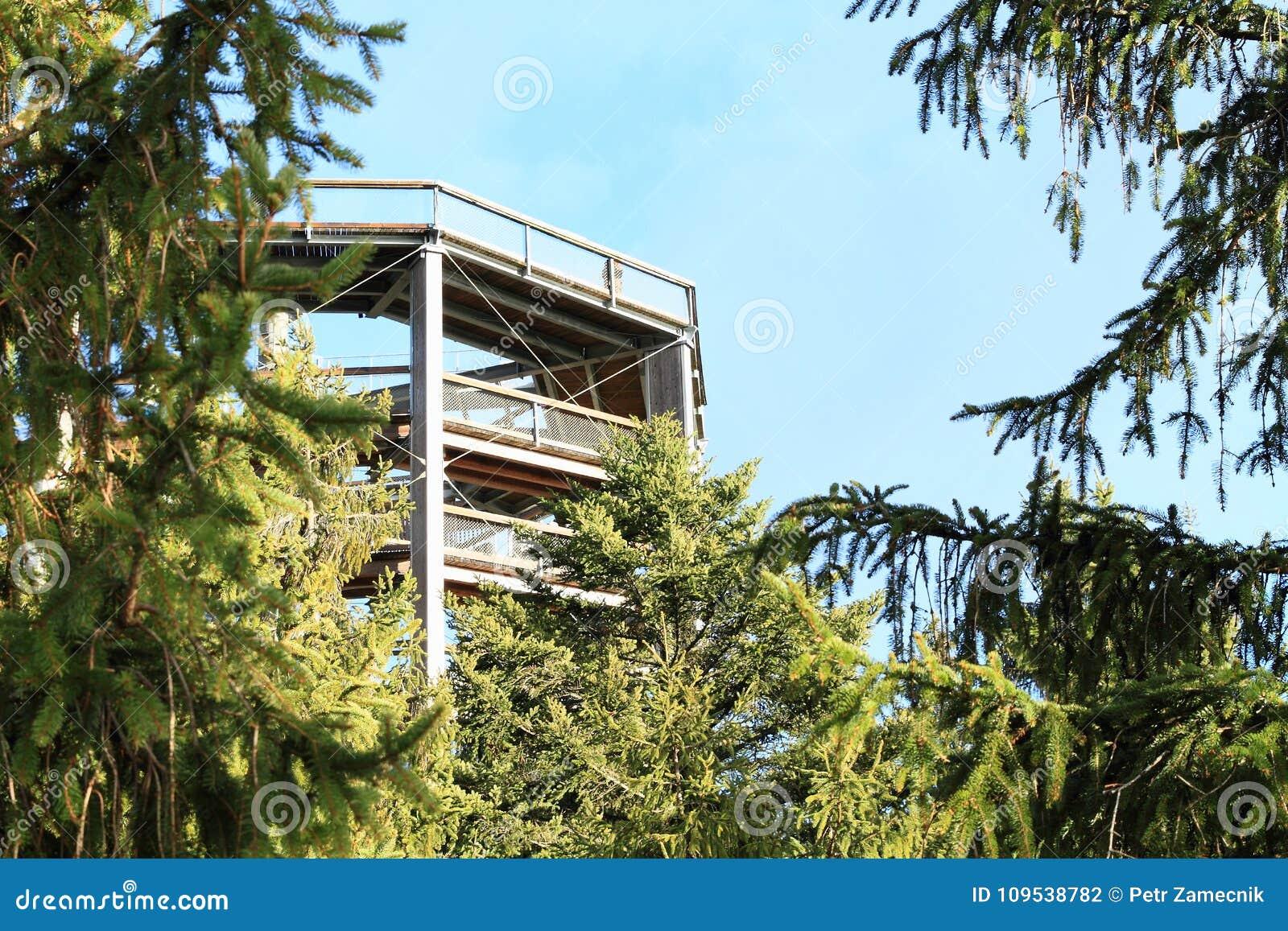 Tour de la surveillance de Lipno d arbres de traînée