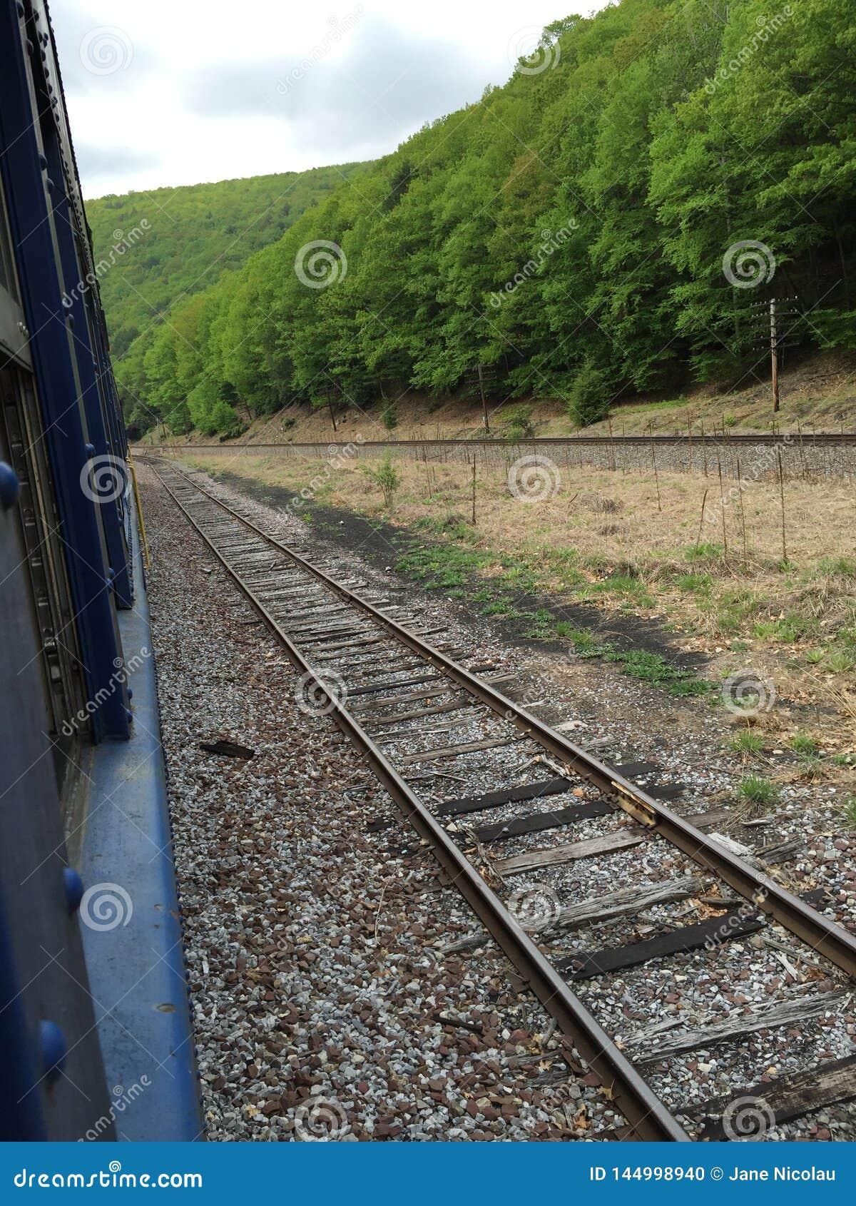 Tour de train