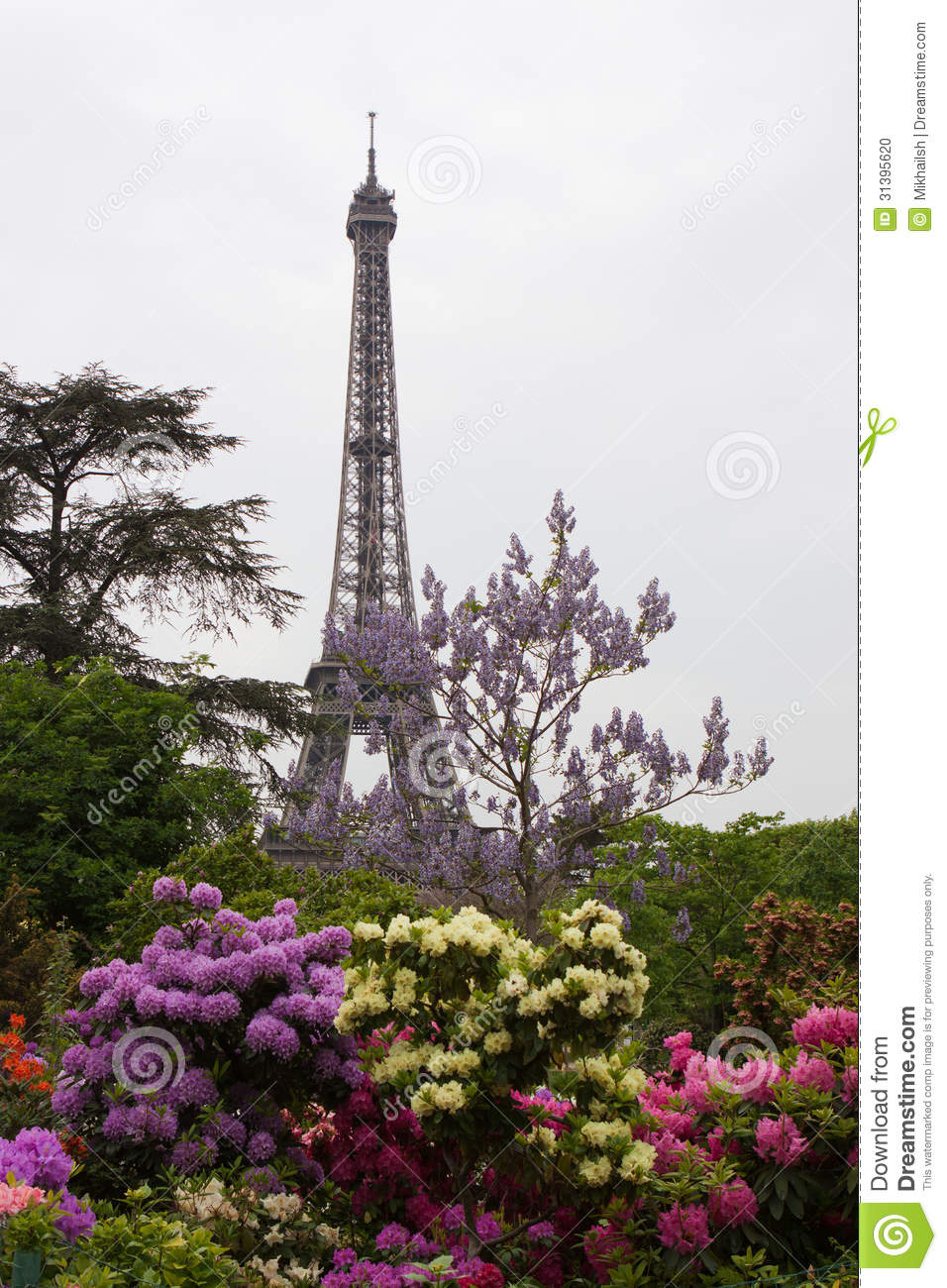 tour eiffel avec des branches de fleur photo stock image 31395620. Black Bedroom Furniture Sets. Home Design Ideas