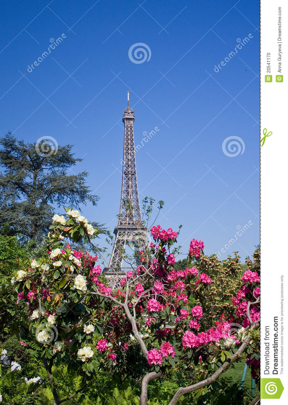 tour eiffel et fleurs photo stock image du avril course 20541170. Black Bedroom Furniture Sets. Home Design Ideas