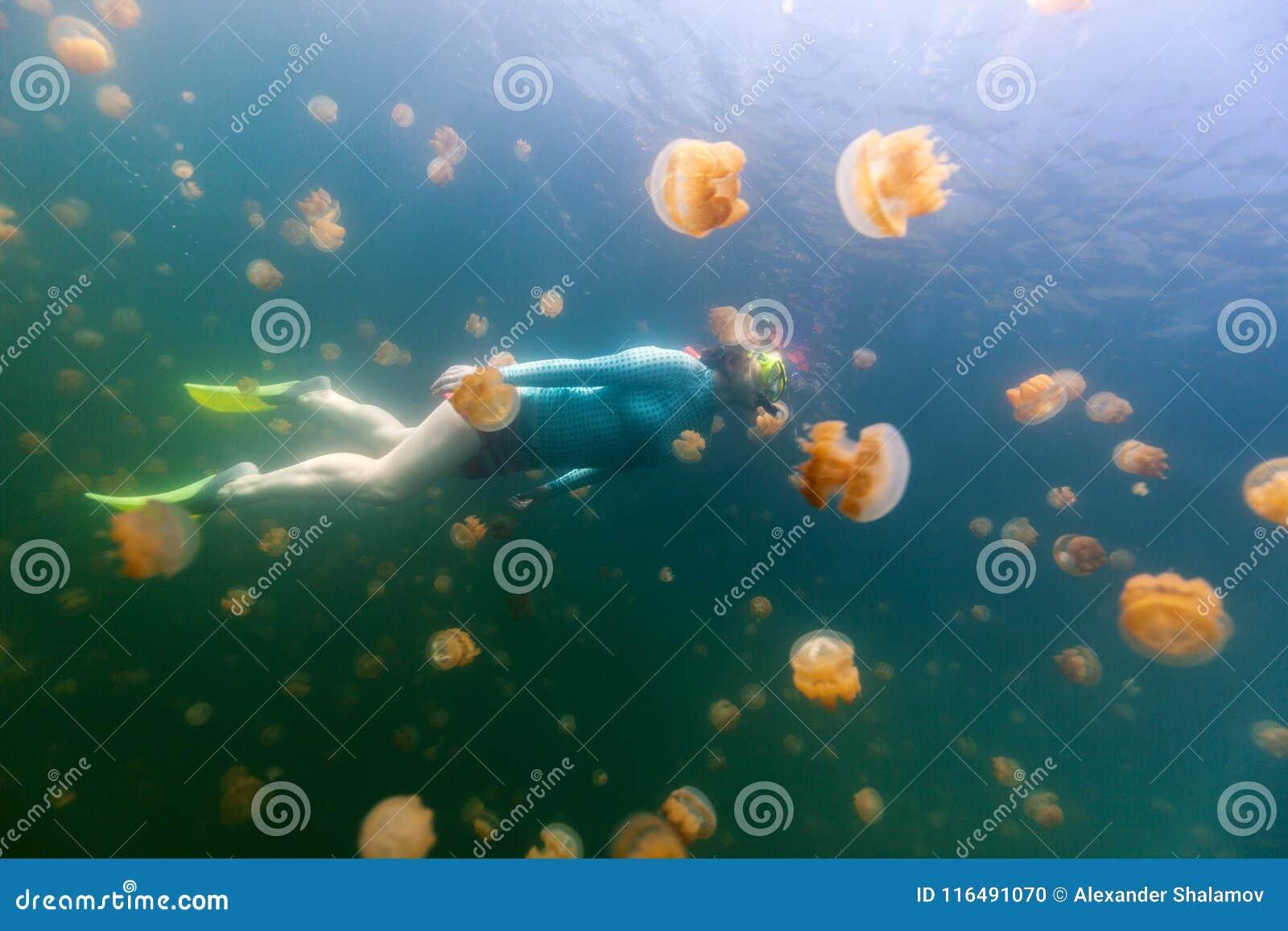 Tourist snorkeling in Jellyfish Lake
