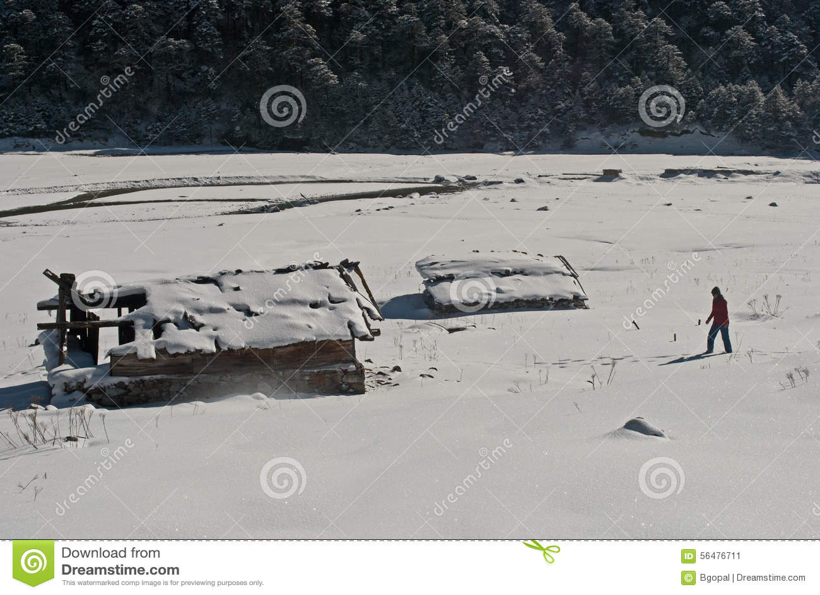 Touriste à la vallée de Yumthang