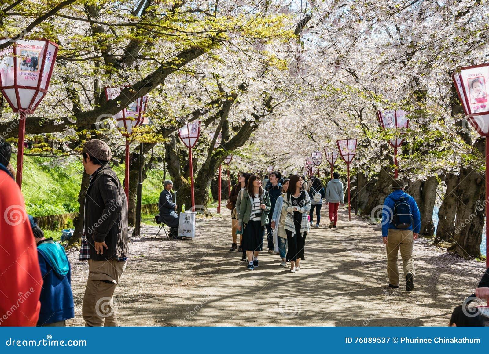 Touriste au parc de château de Hirosaki