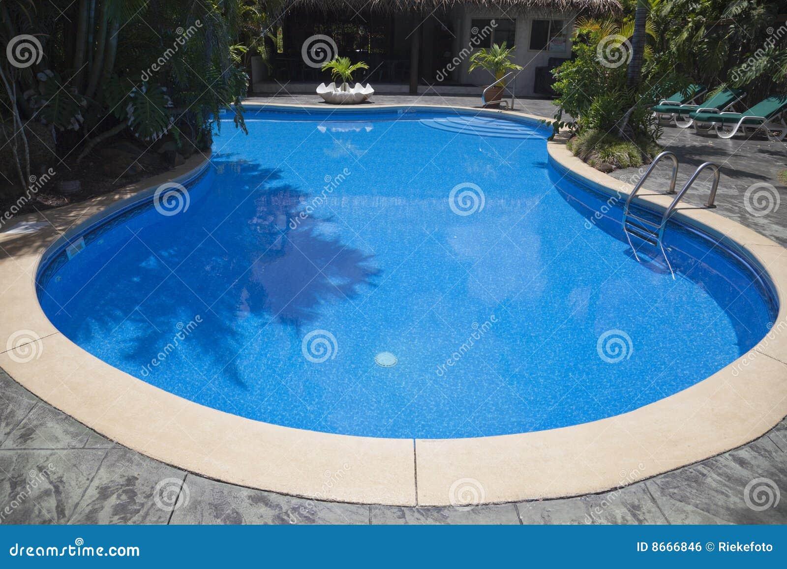 Touriste de natation de ressource de regroupement