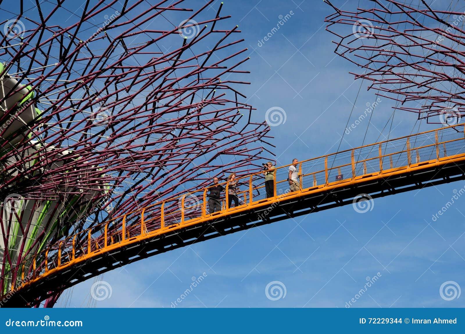 Touristes sur OCBC Skyway entre Supertrees aux jardins par la baie Singapour