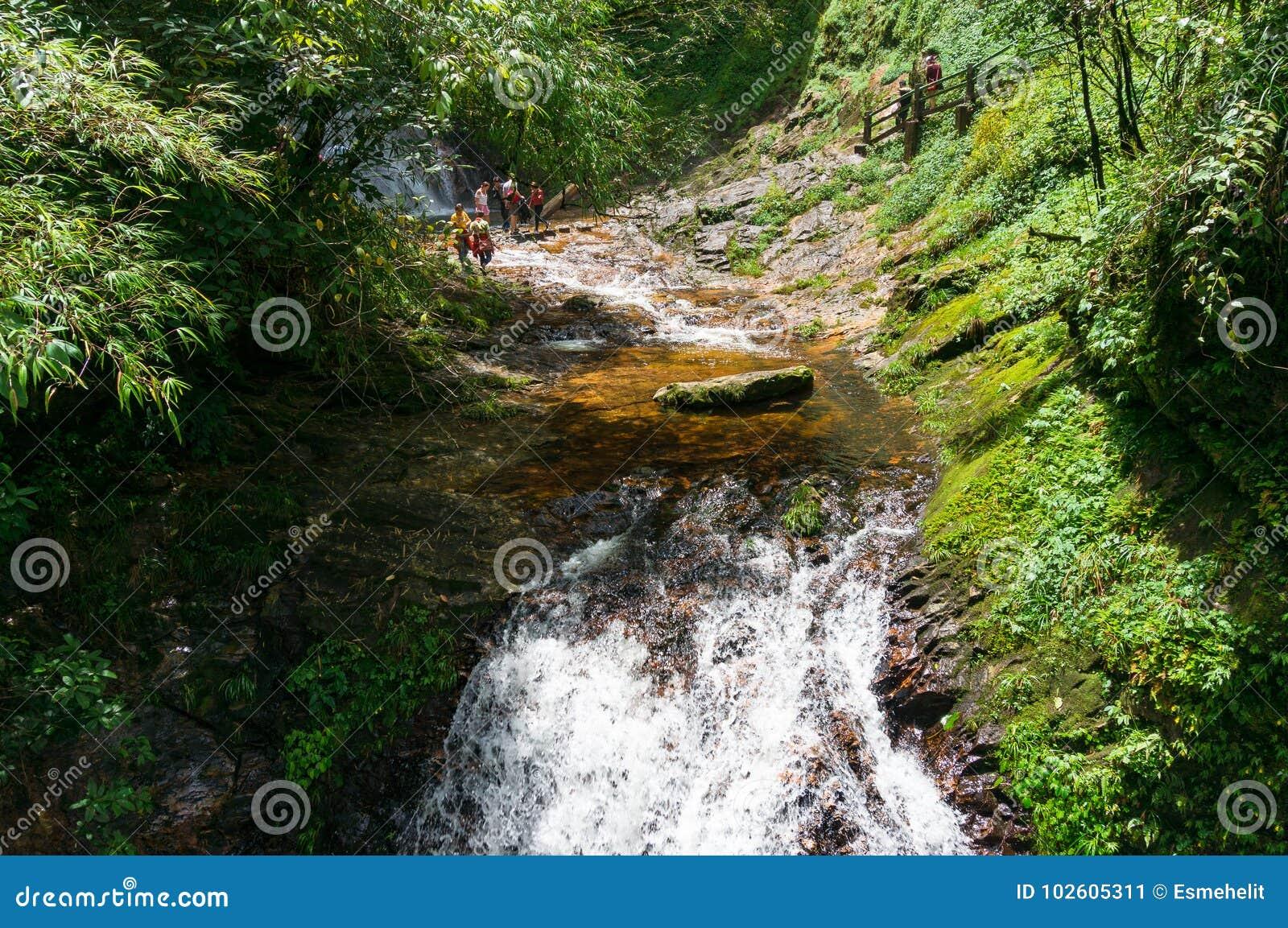 Touristes traversant la rivière rapide de montagne dans l ecotouri d or de courant