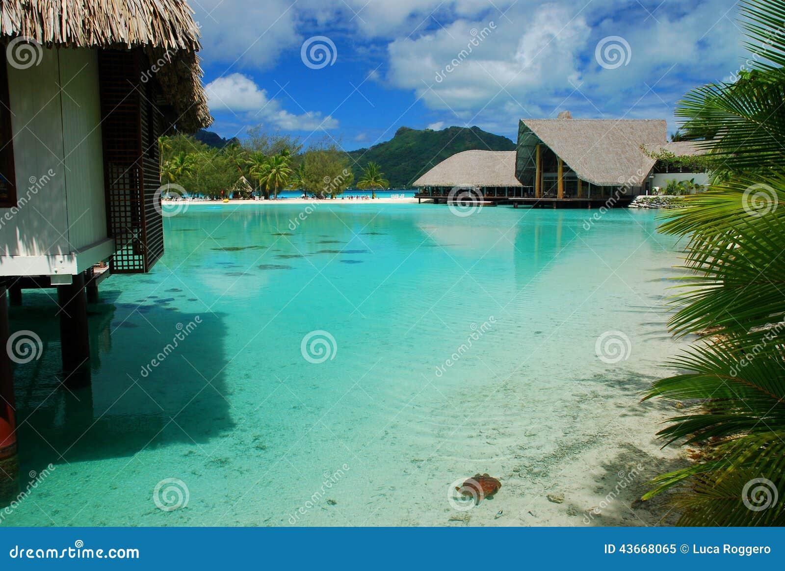 Touristic semesterort borafransman polynesia
