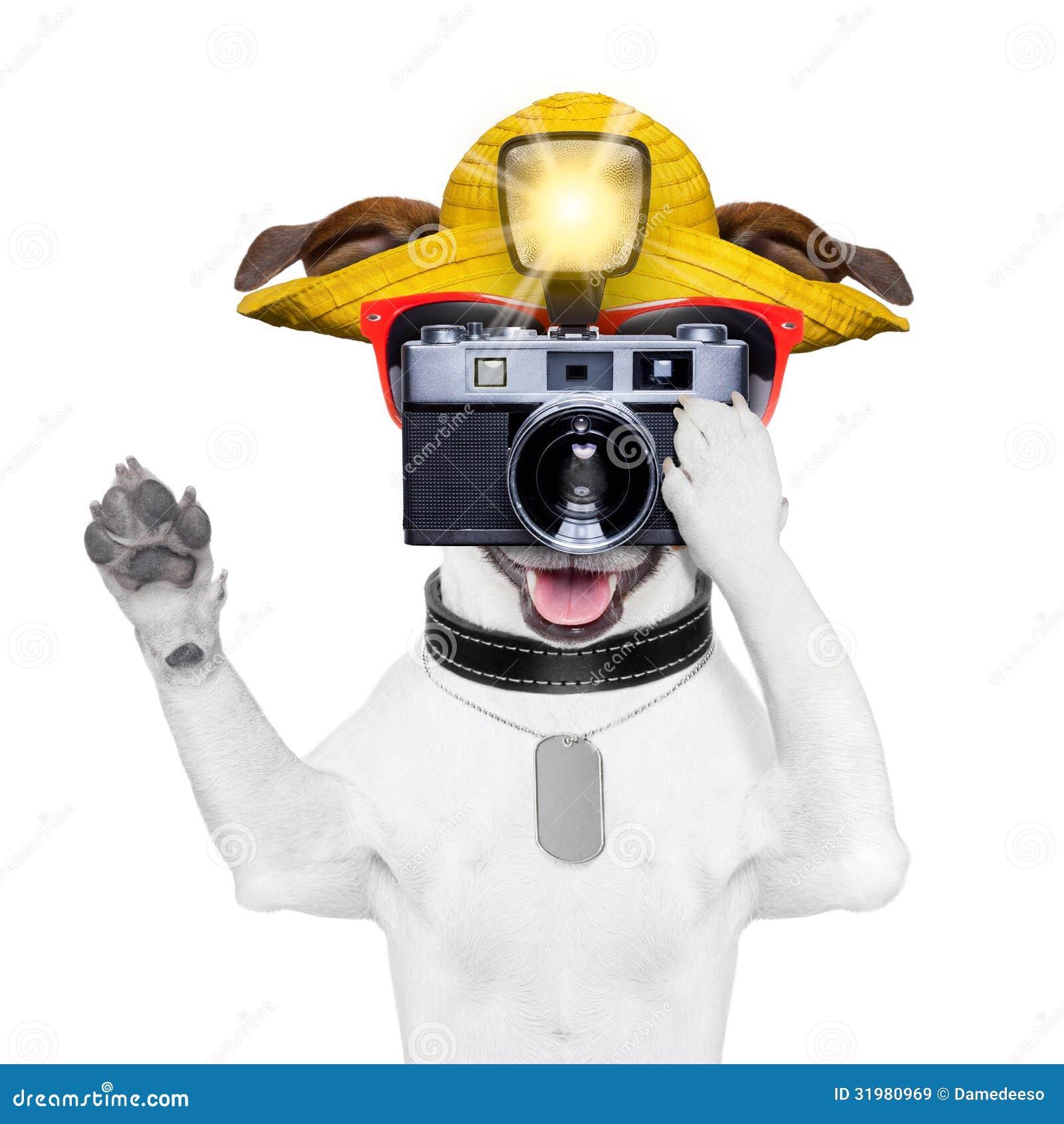 Touristischer Hundephotograph