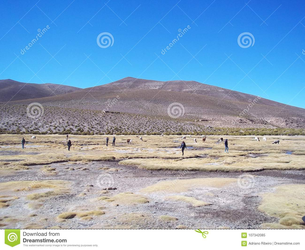 Tourists contemplating beautiful desert landscapes of the Bolivian altiplano