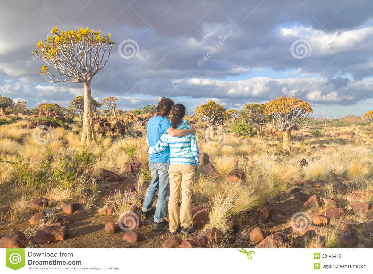 Tourists travel in south africa