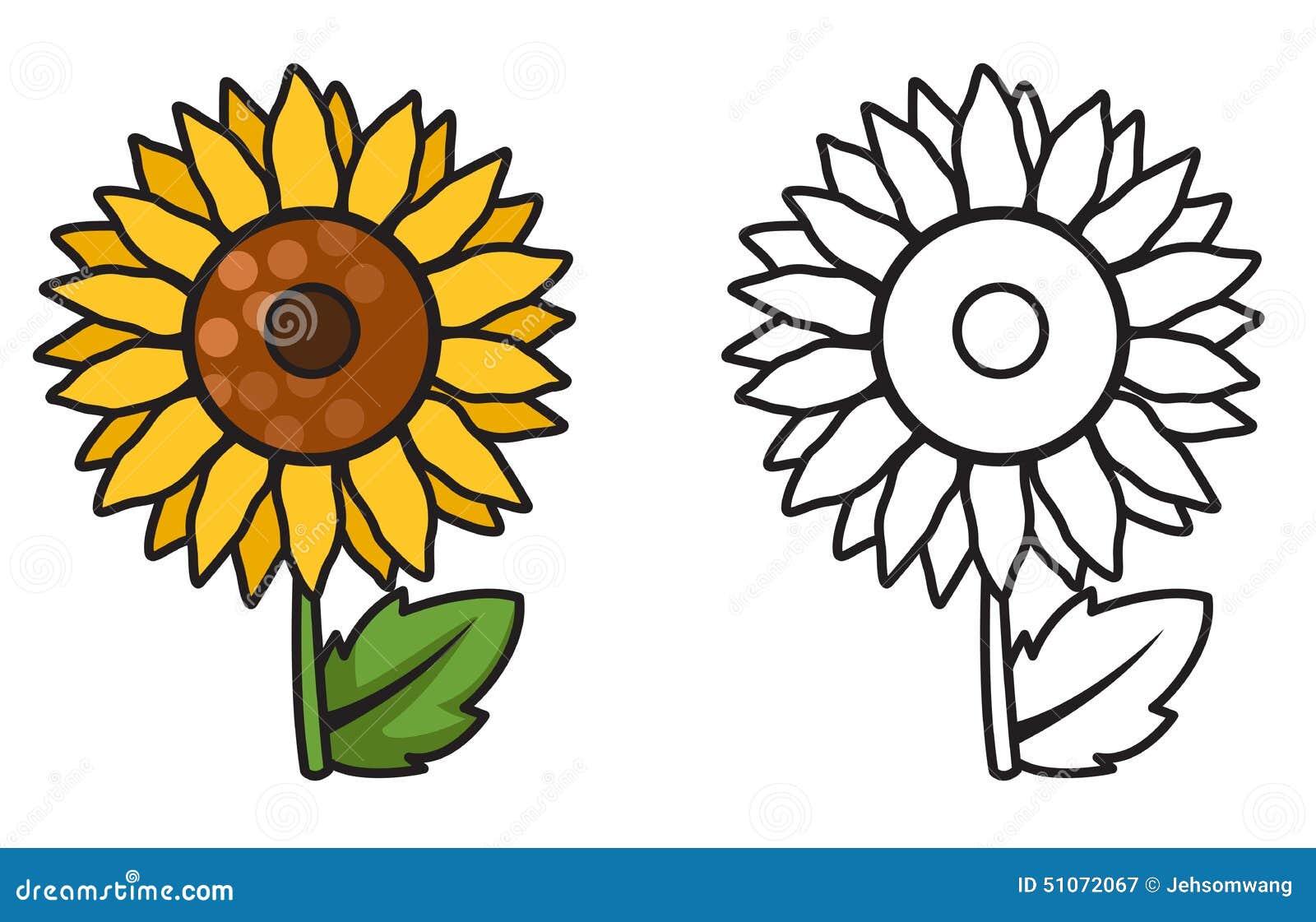 Tournesol color et noir et blanc pour livre de coloriage - Coloriage tournesol ...