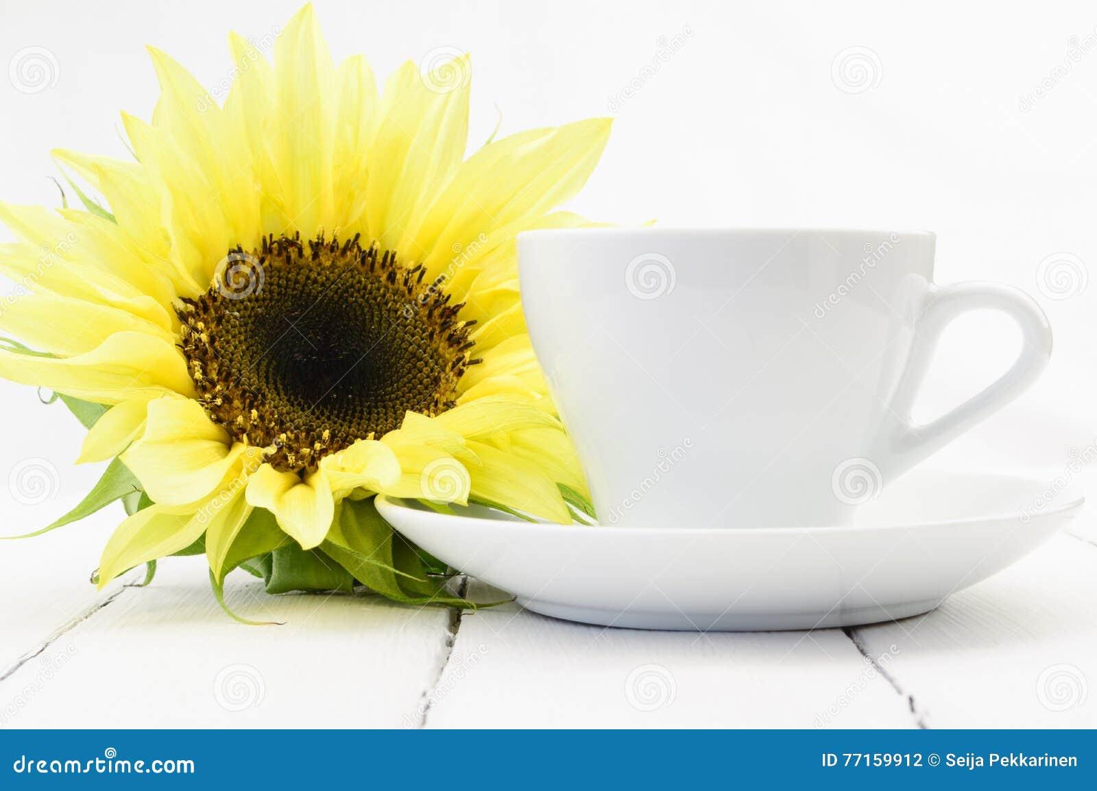 Tournesol près d une tasse de café