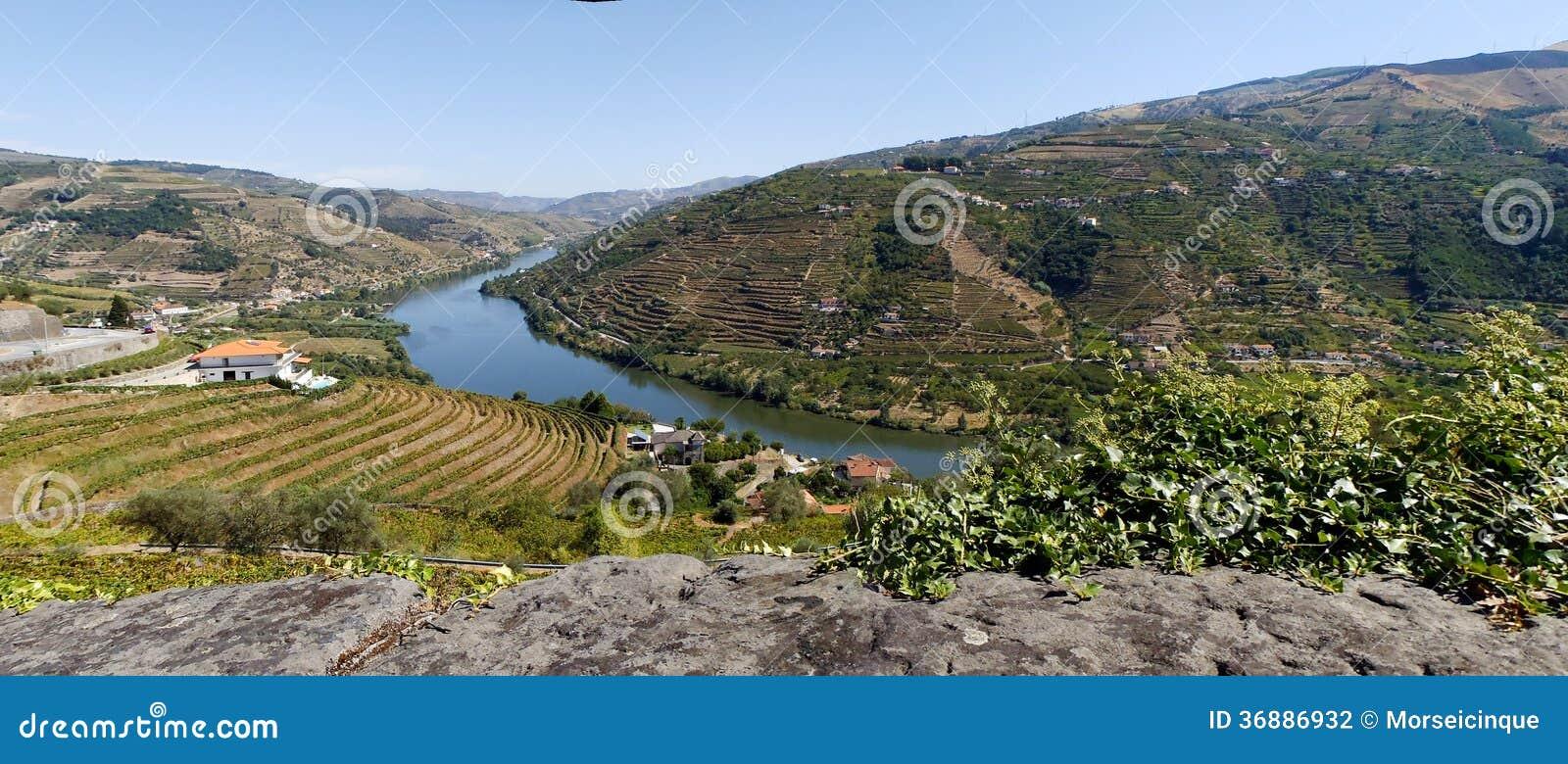 Download Tours In Spagna E Nel Portogallo 2013 Fotografia Stock - Immagine di erba, naughty: 36886932