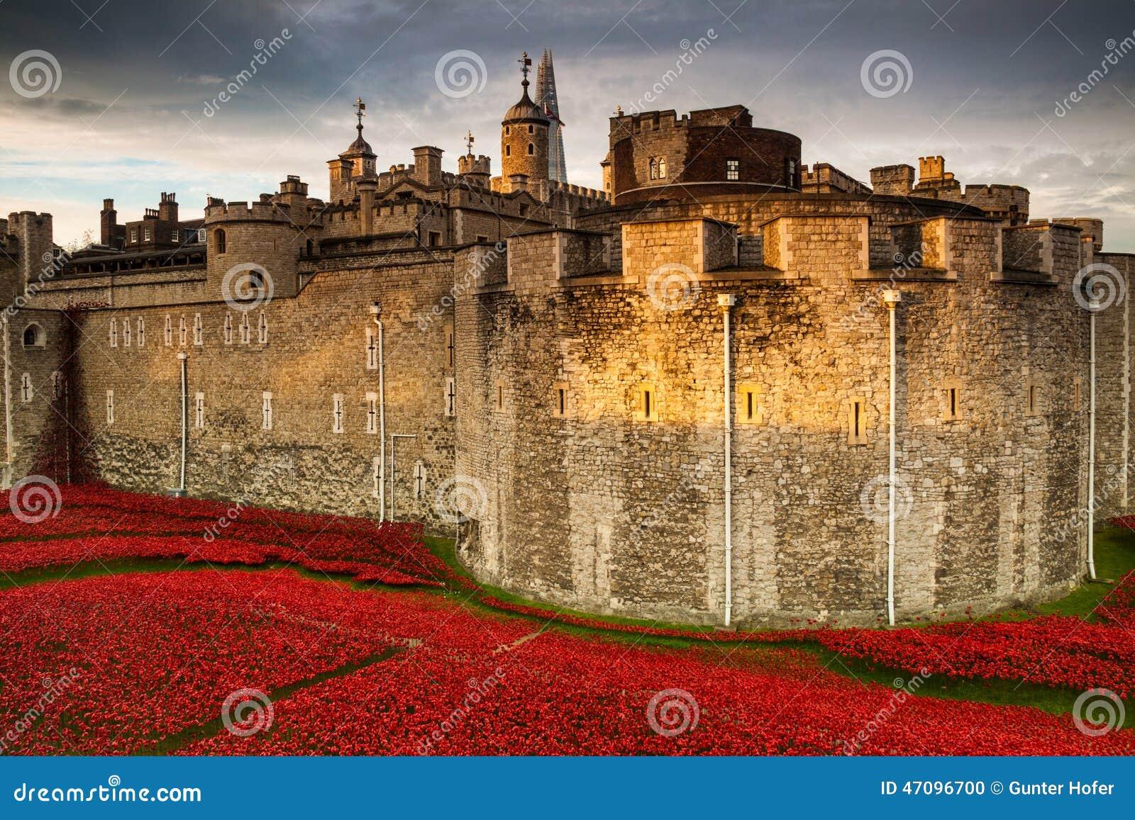 Tower of London Poppy display WW1