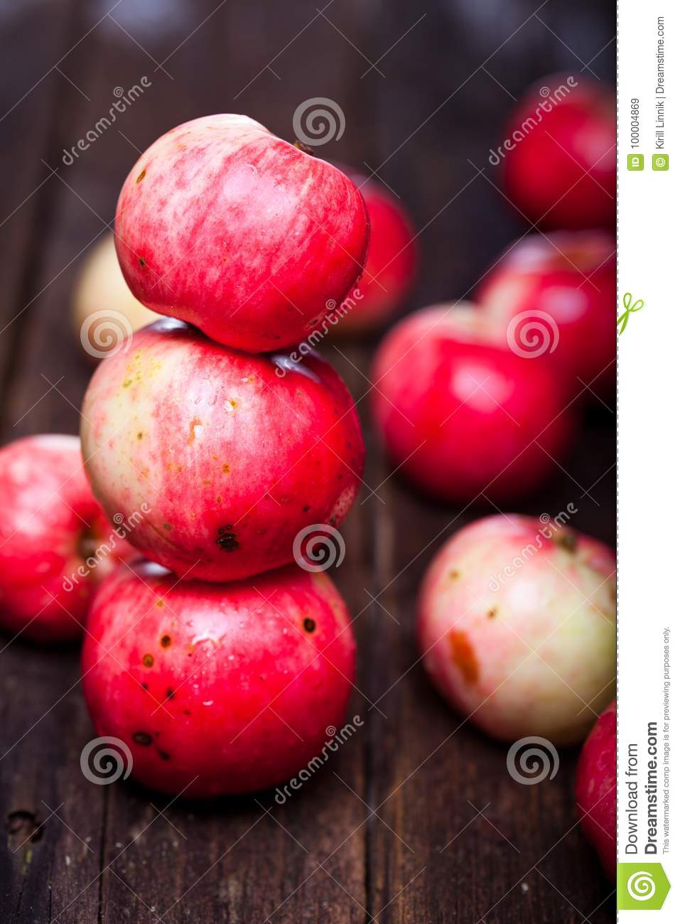 Download Red ripe apples stock image. Image of health, retro - 100004869