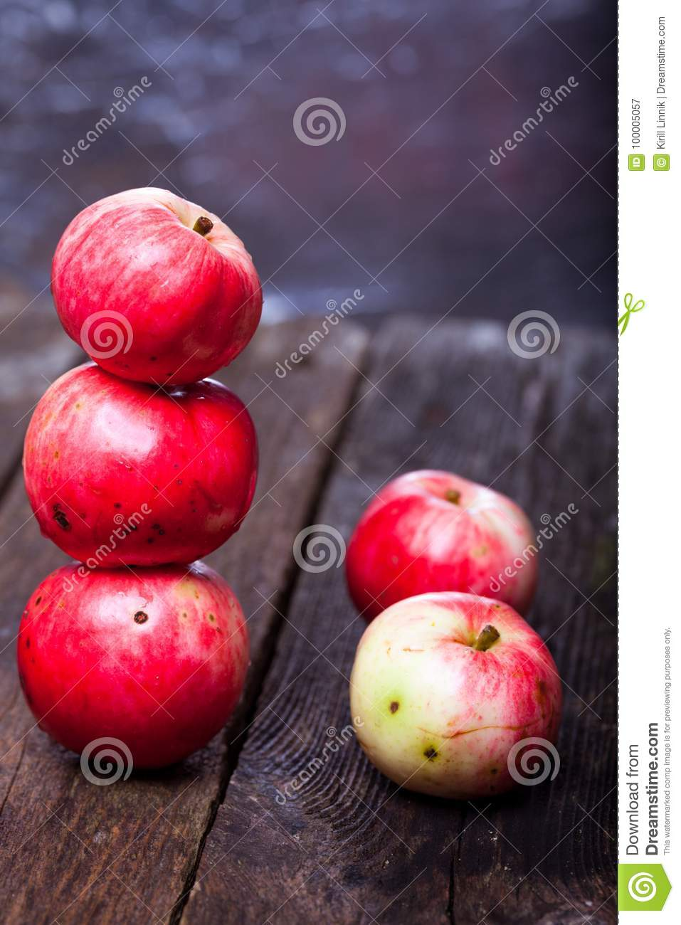 Download Red ripe apples stock image. Image of apple, nature - 100005057