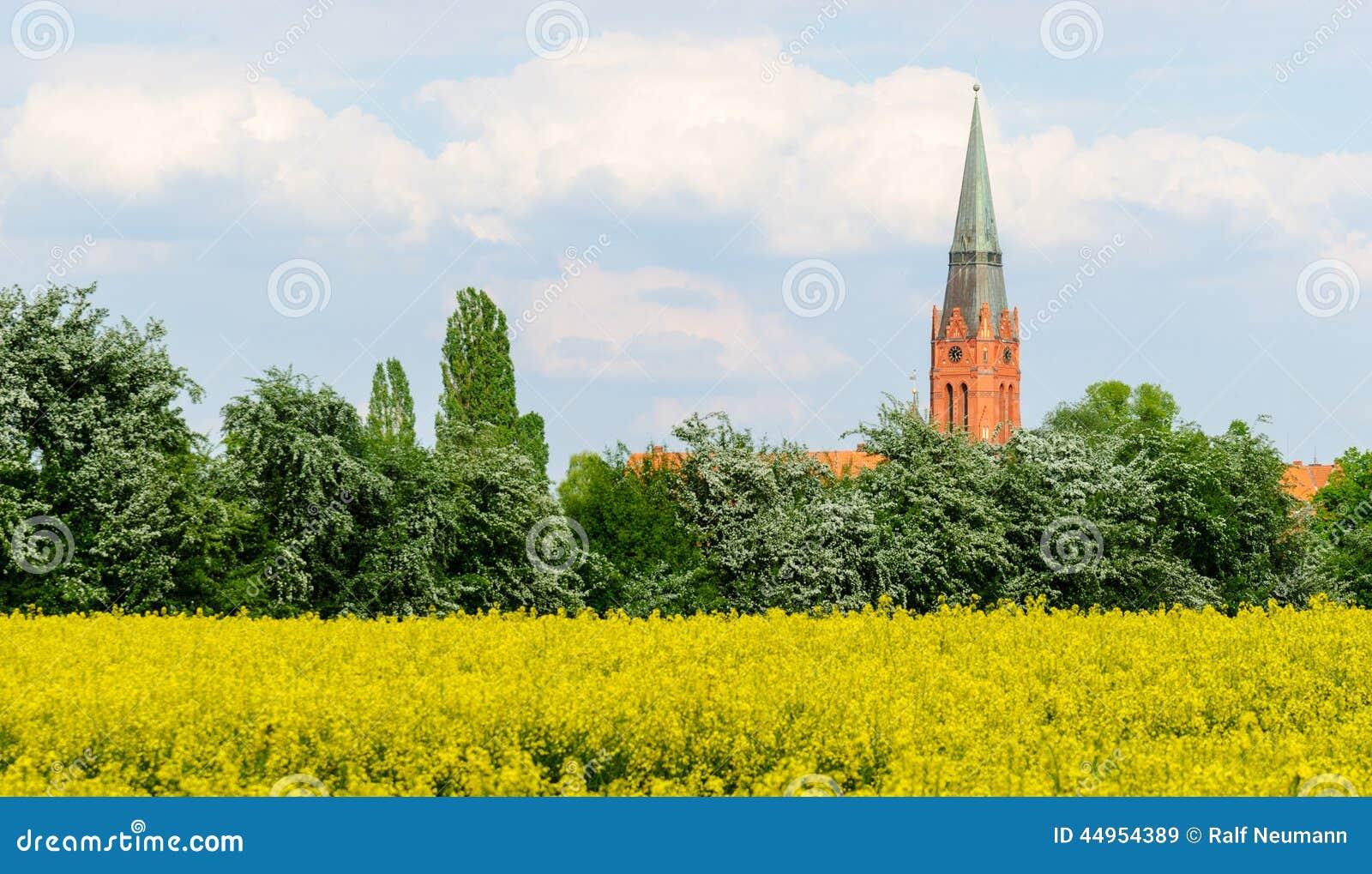Tower of St. Martin in Nienburg