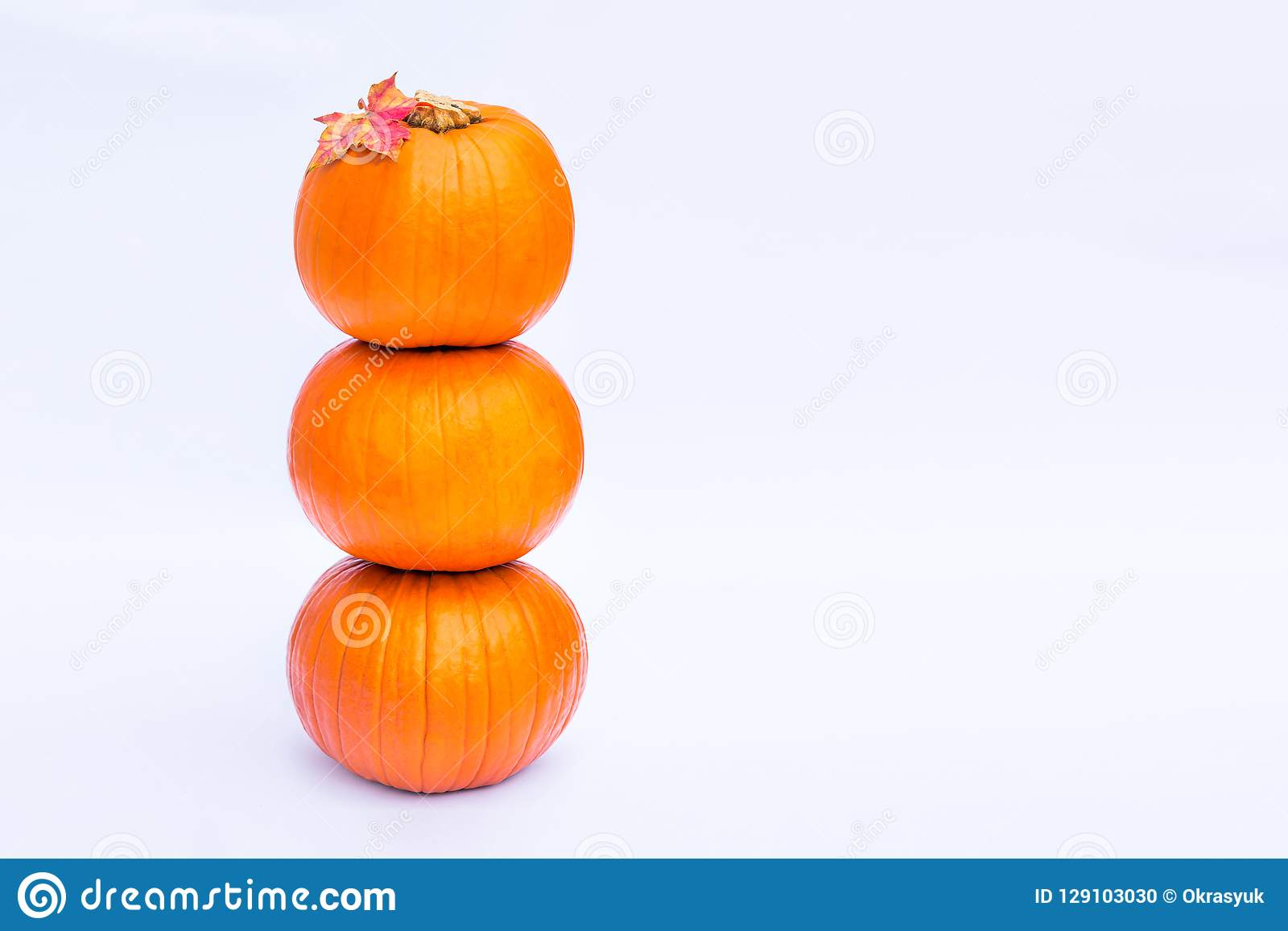 Tower of Three stacked mini pumpkins with fall maple leaf on the top on the white background isolated. Autumn holiday, harvest, He
