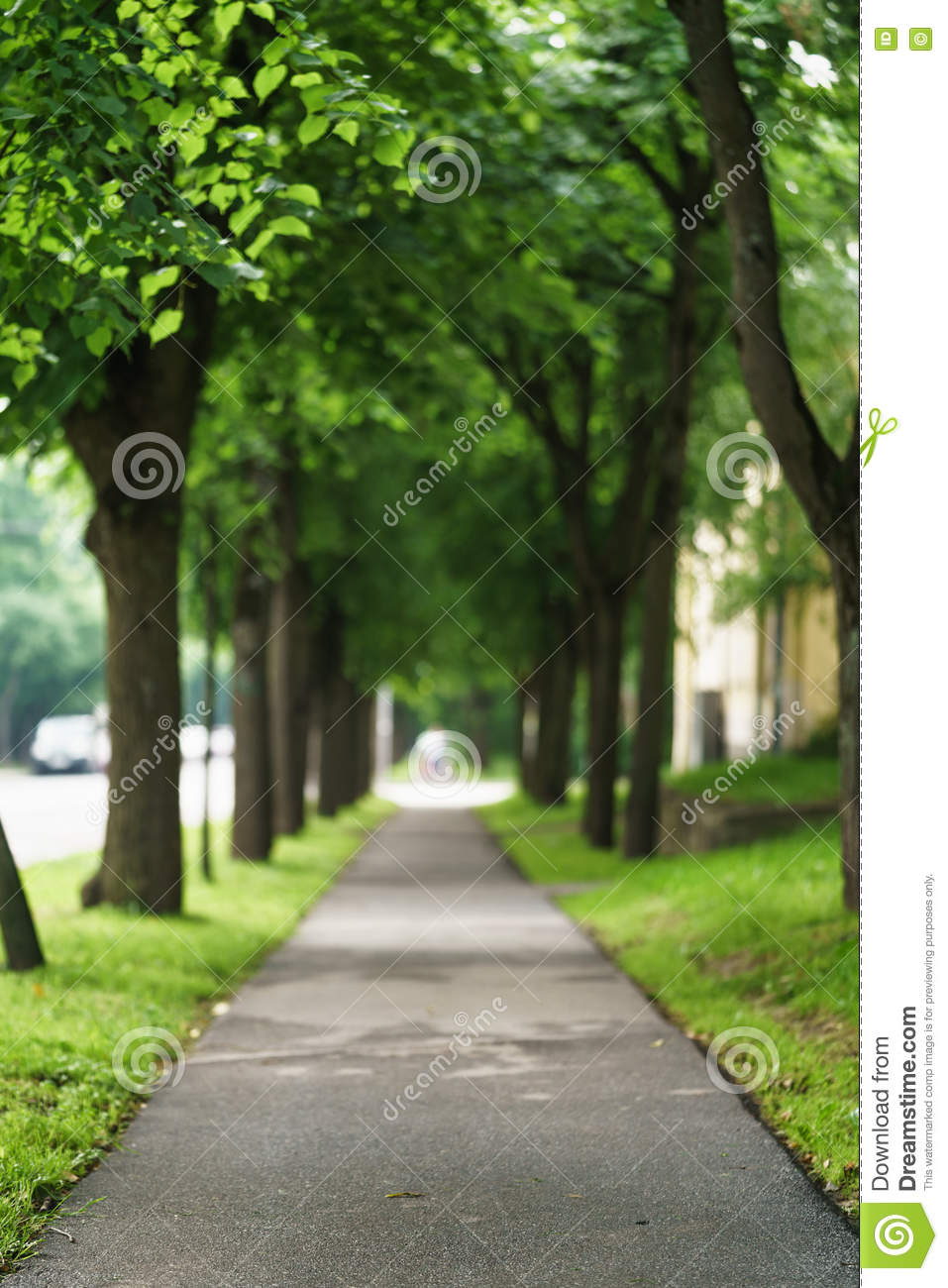 Town Alley With Green Trees Background Stock Image Image Of
