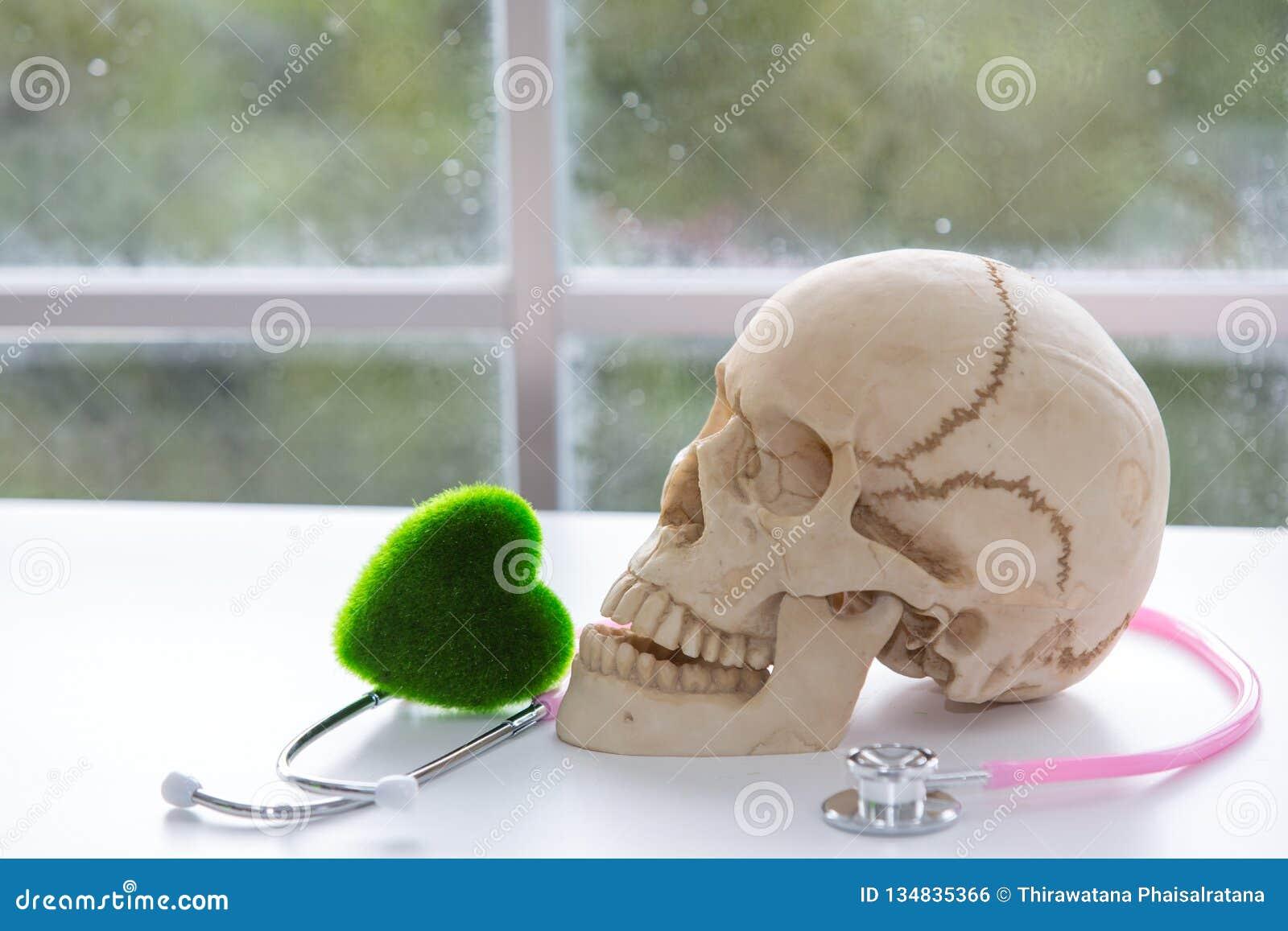 Toxicomanie néfaste Le foyer est sur la seringue Crâne et stéthoscope stéthoscope et coeur vert Les scientifiques expérimentent a