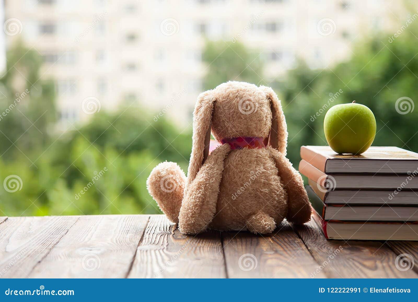 Toy Bunny-de zittingsrug, ligt naast een stapel van boeken en groen Apple Concept in afwachting van het nieuwe schooljaar