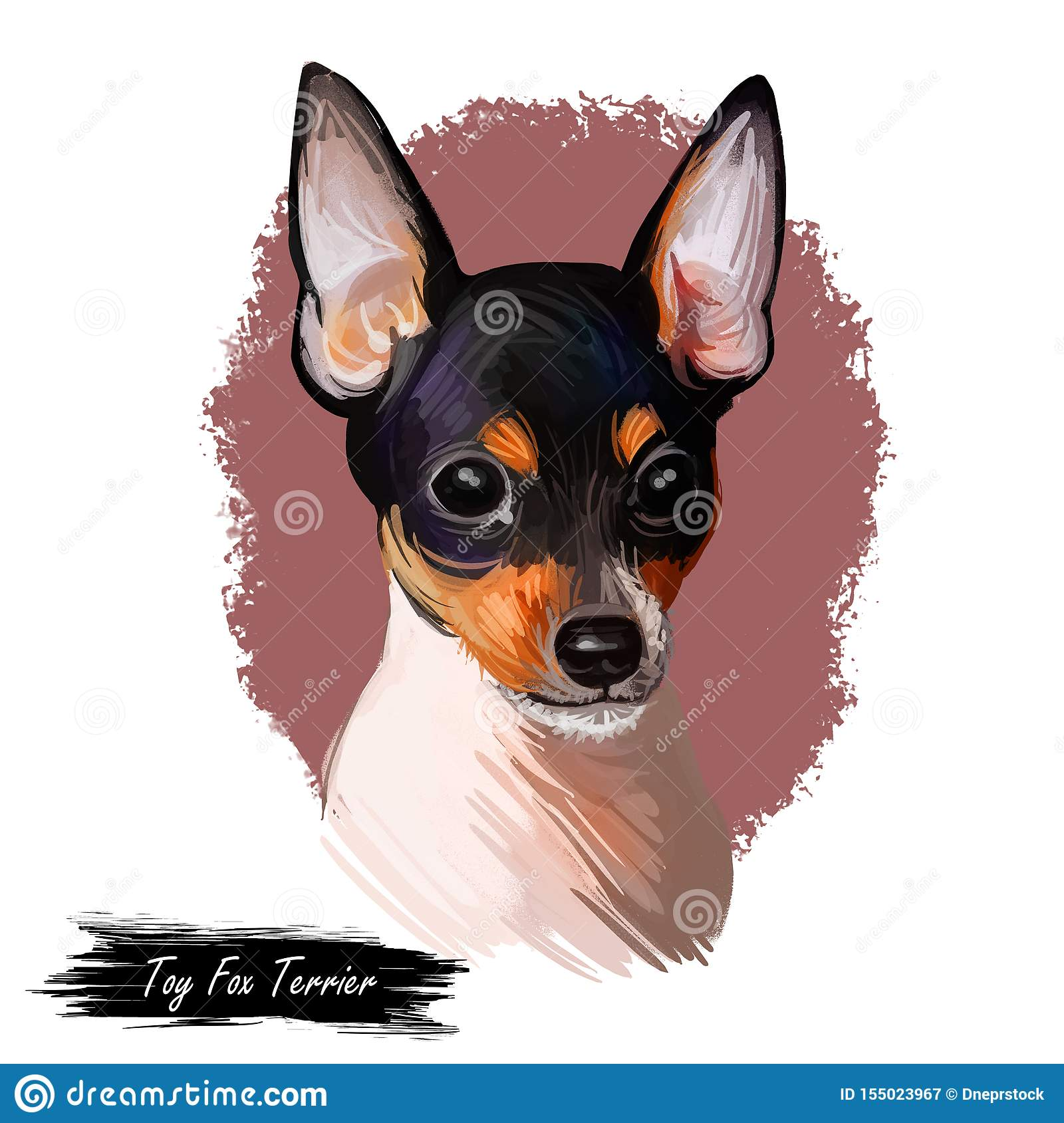 Toy Fox Terrier Dog Breed Portrait Isolated On White Digital Art Illustration Animal Watercolor Drawing Of Hand Drawn Doggy For Stock Illustration Illustration Of Colorful Handsome 155023967