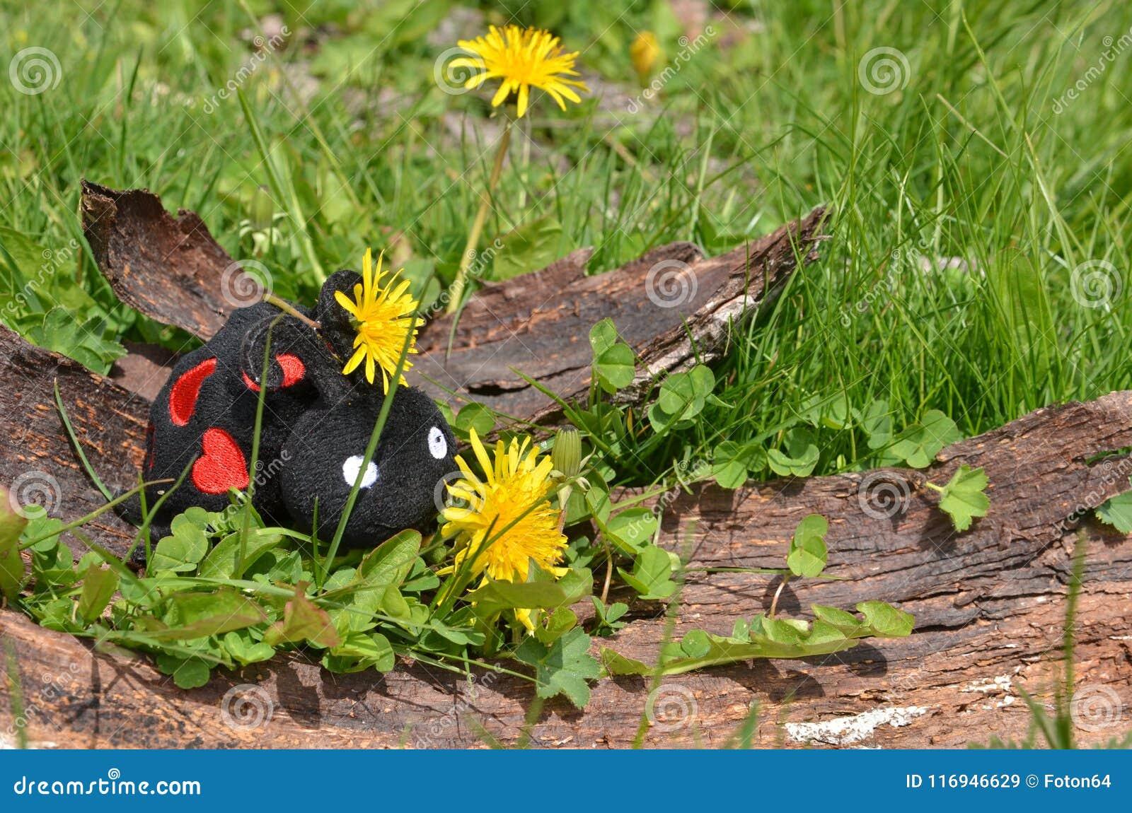 Toy ladybug on tree bark dandelions stock image image of green toy ladybug on tree bark dandelions mightylinksfo