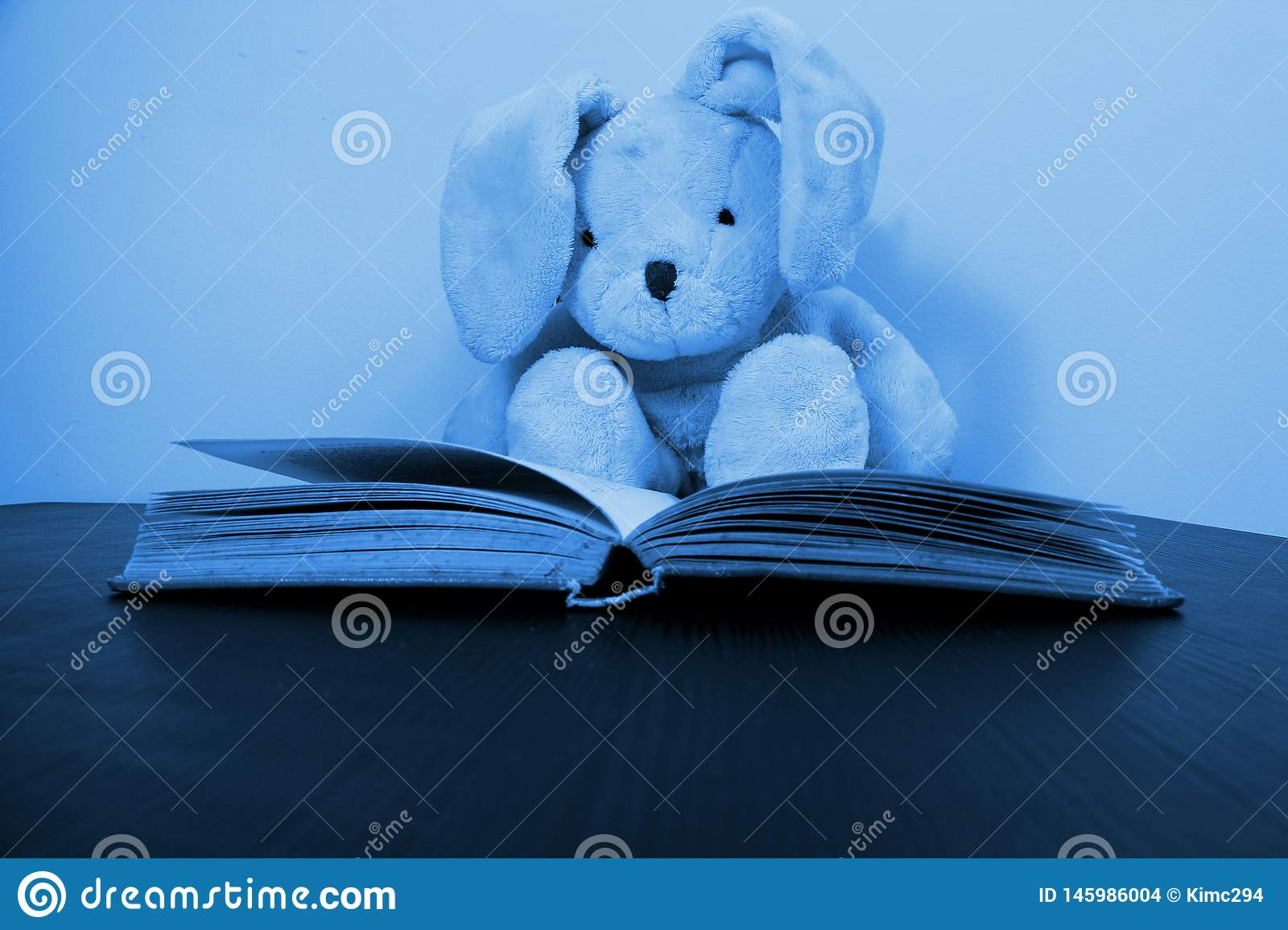 A rabbit plush toy sitting behind an open book