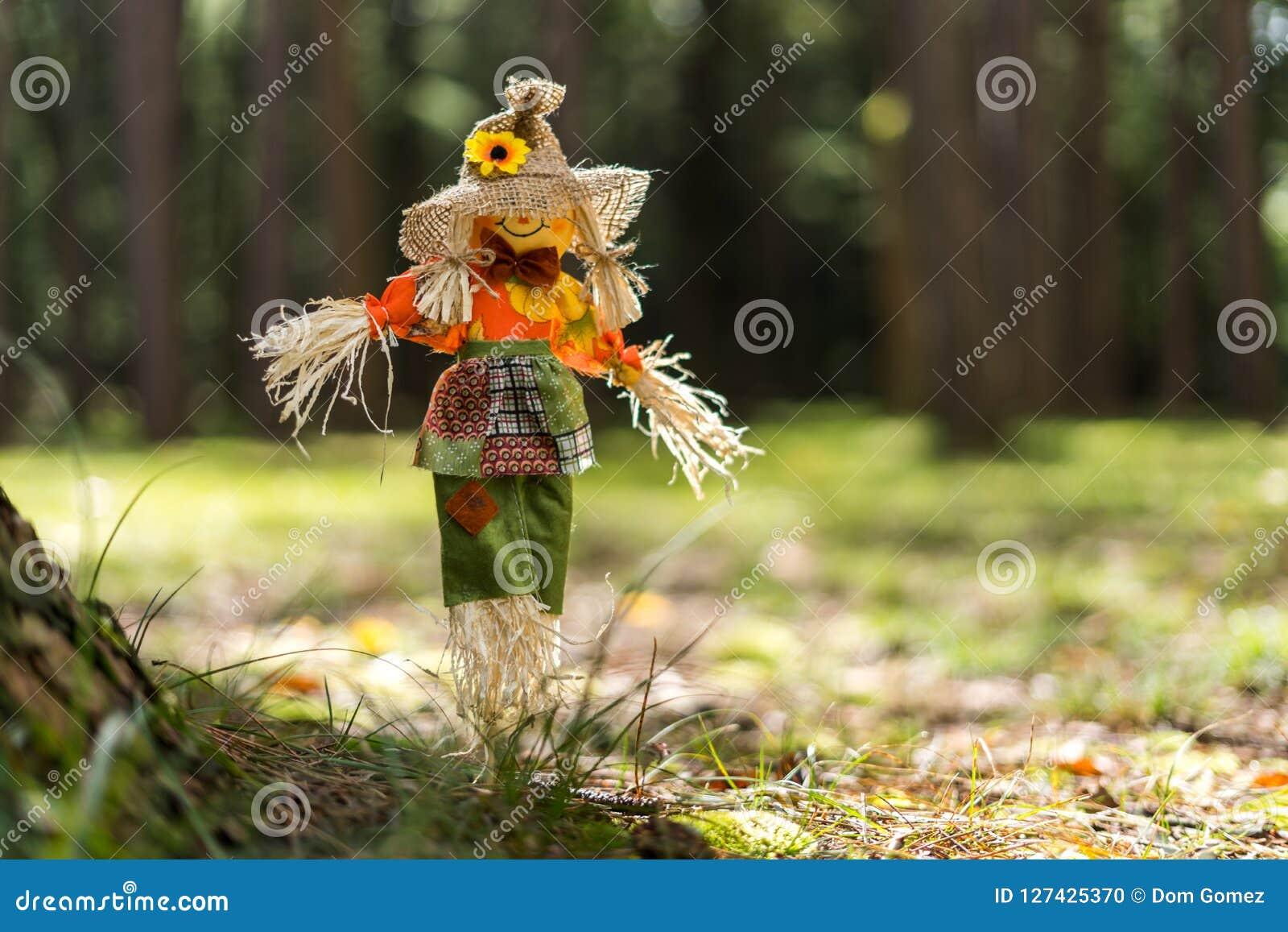 Toy Scare Crow en hierba en un bosque