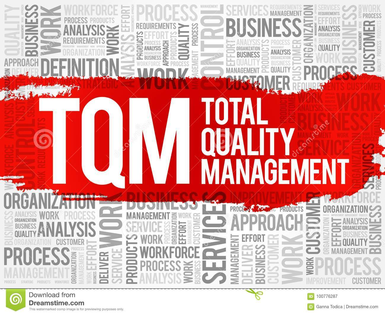 Total Quality Management Implementation and Systems