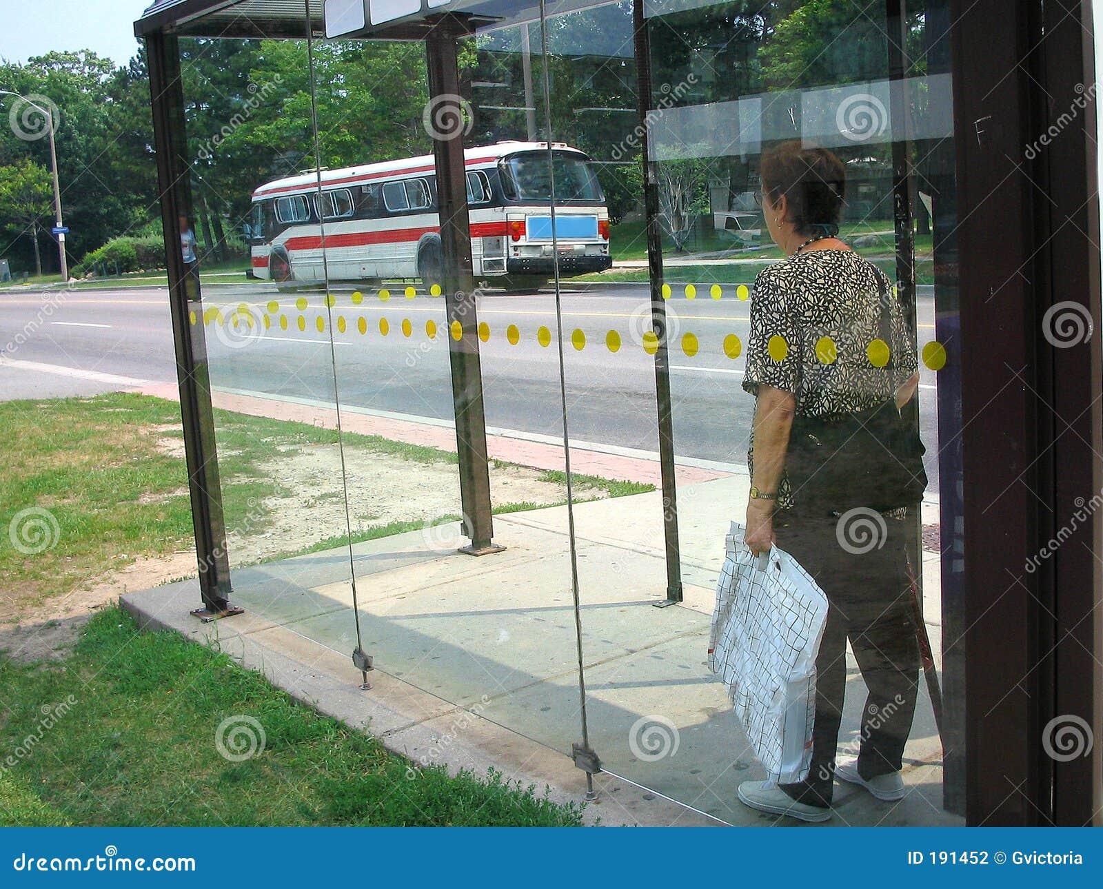 Tránsito público