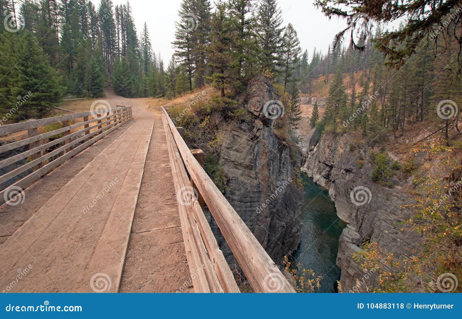 Träbro över ängliten vikklyftan för att fotvandra och hästryggemballageslinga i det Bob Marshall Wilderness området i Montana USA
