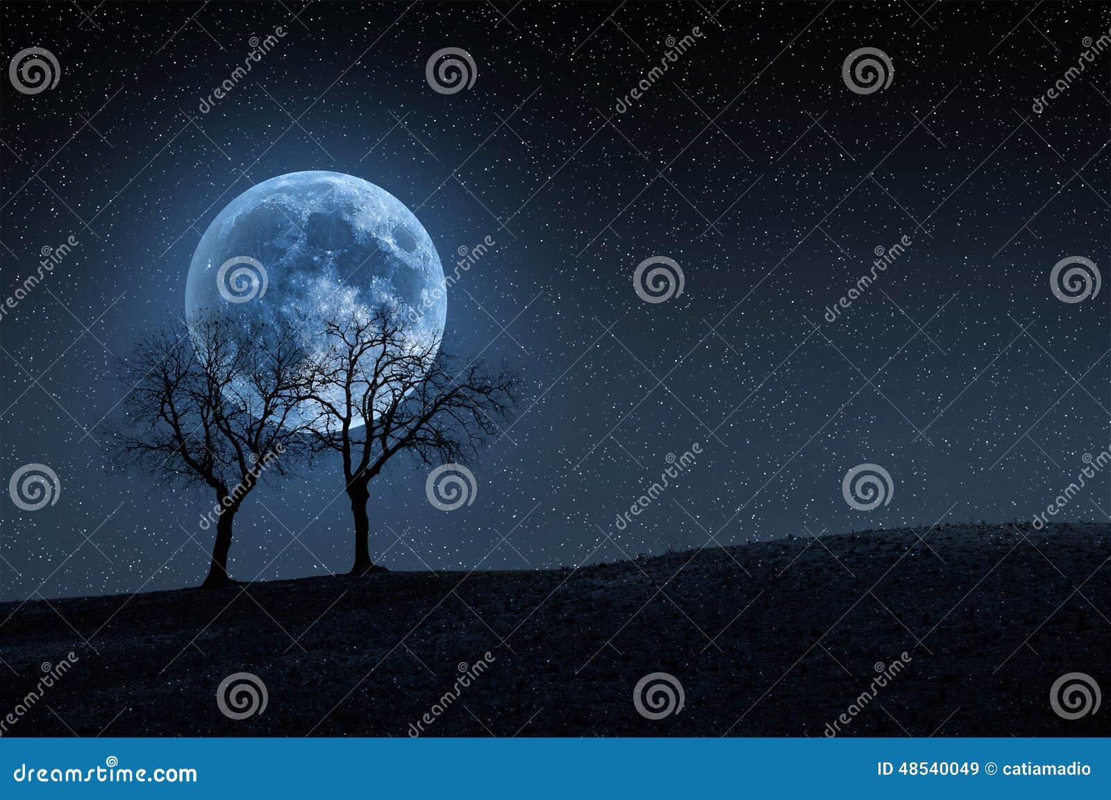 Träd i blå måne