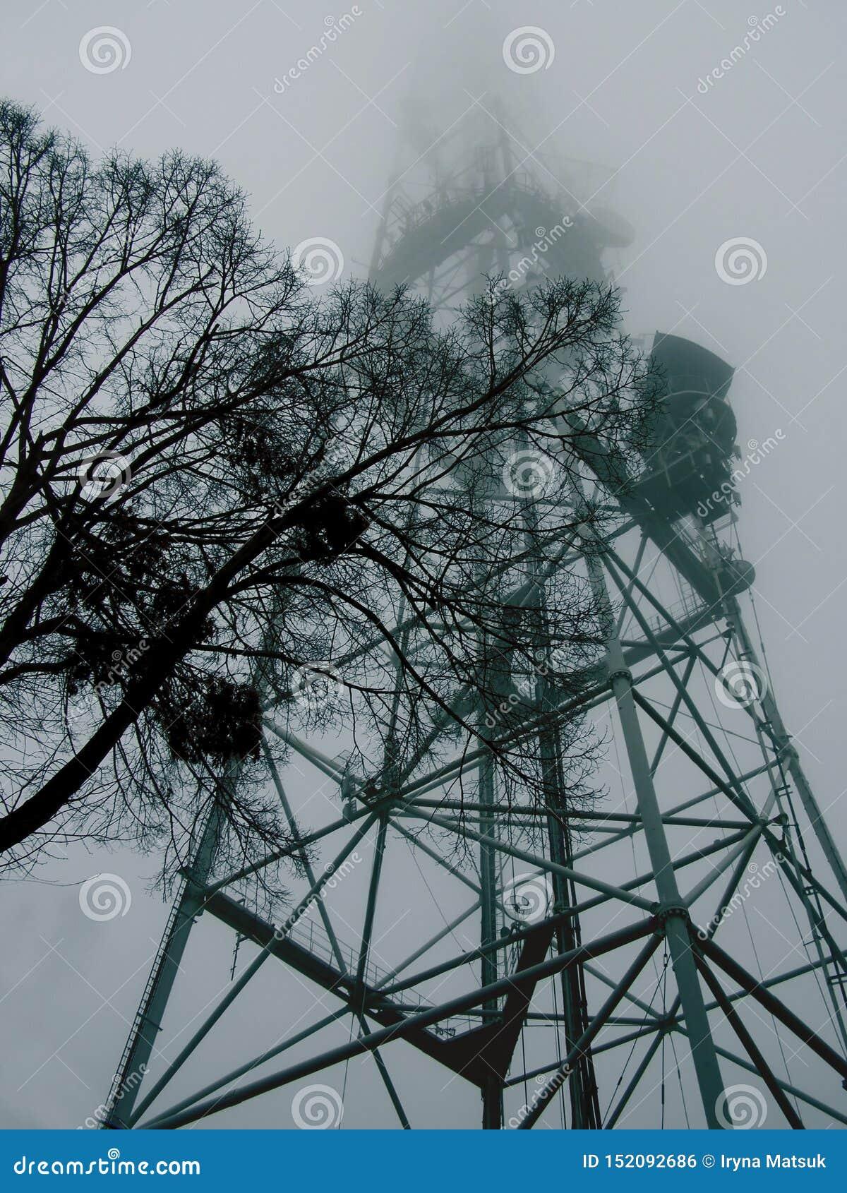 Träd på bakgrunden av ett torn för hög metall i dimman