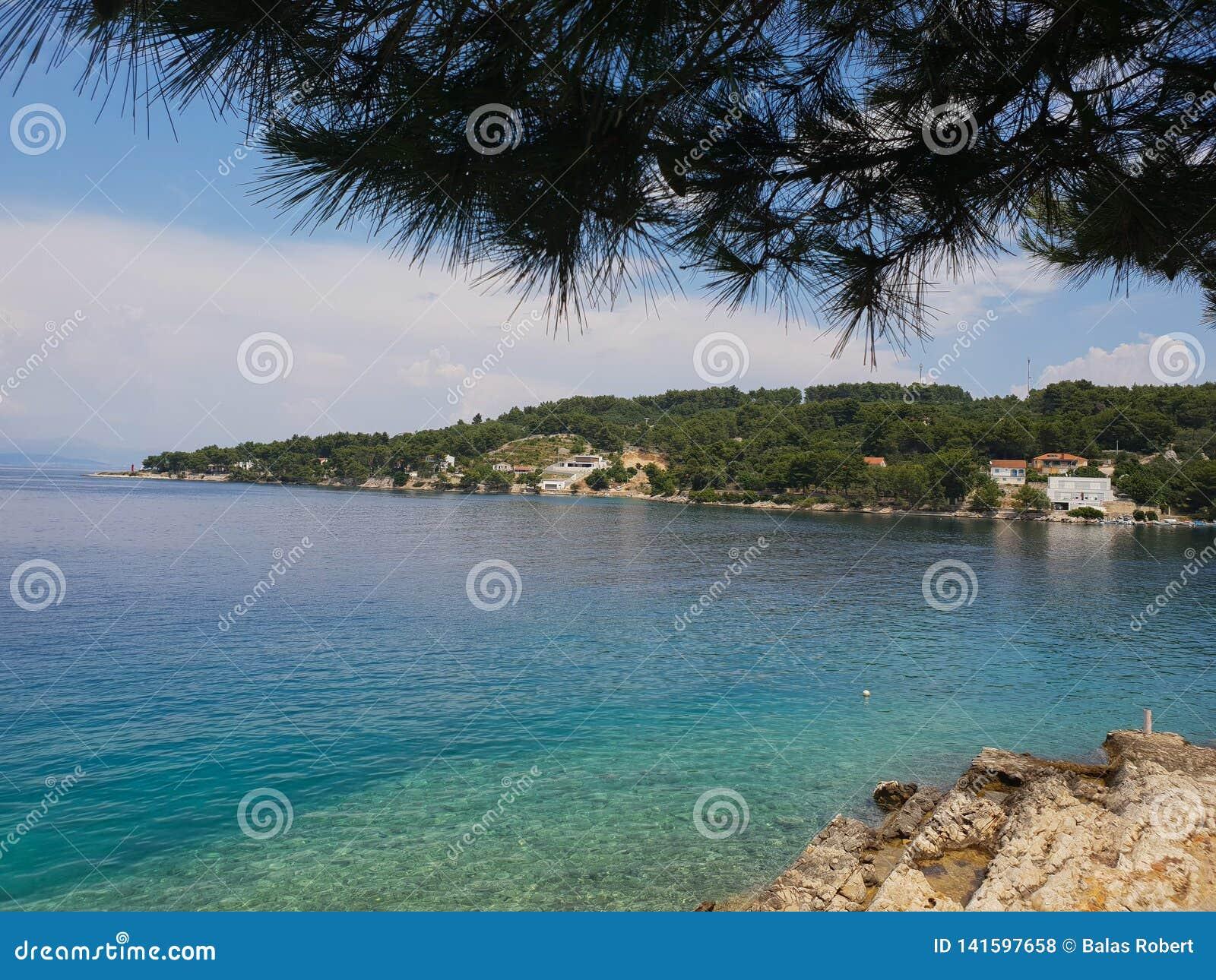 Träd skuggad medelhavs- stenig strand