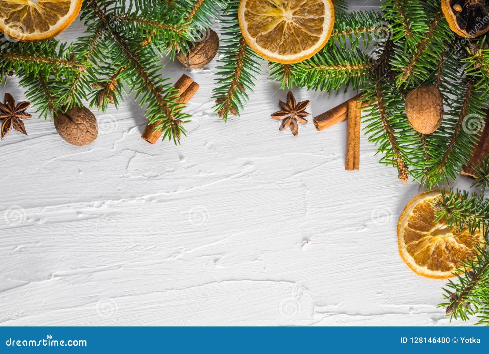 Trädet för barrträdet för ris för vit bakgrund för jul torkade det nya citruns