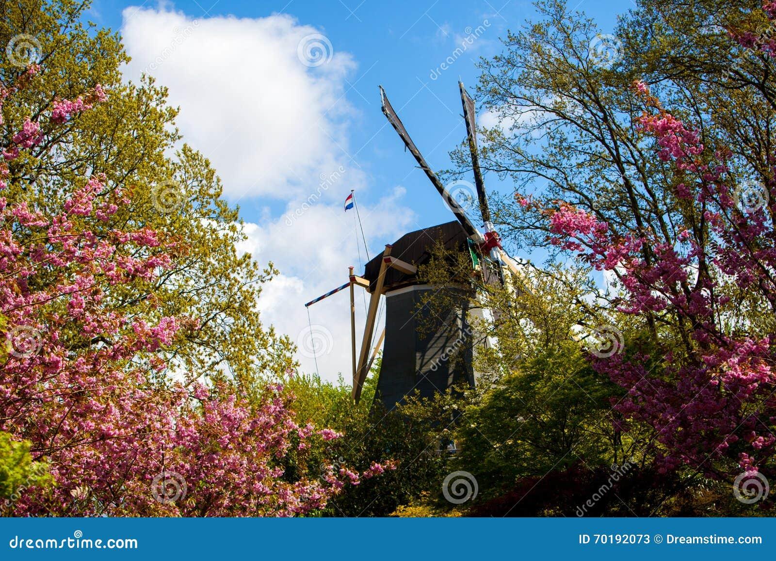 Trädgård av Europa