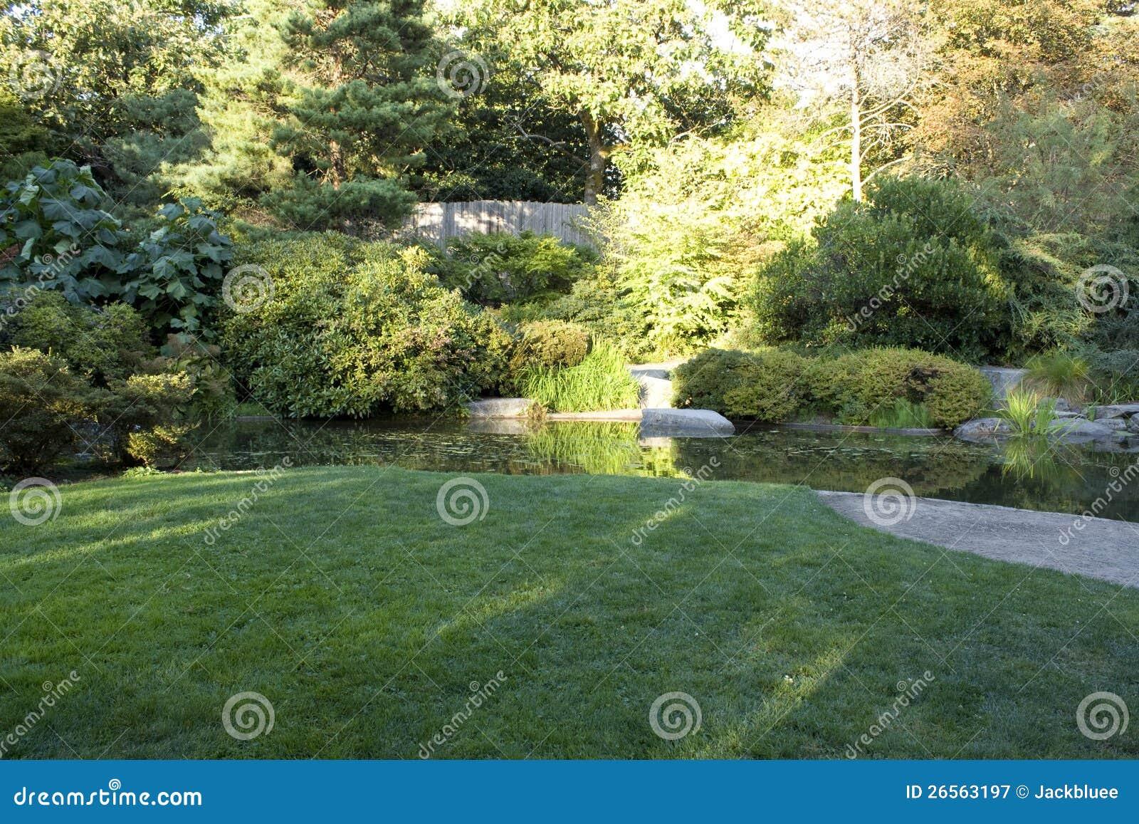Trädgård med trevlig lawn och damm