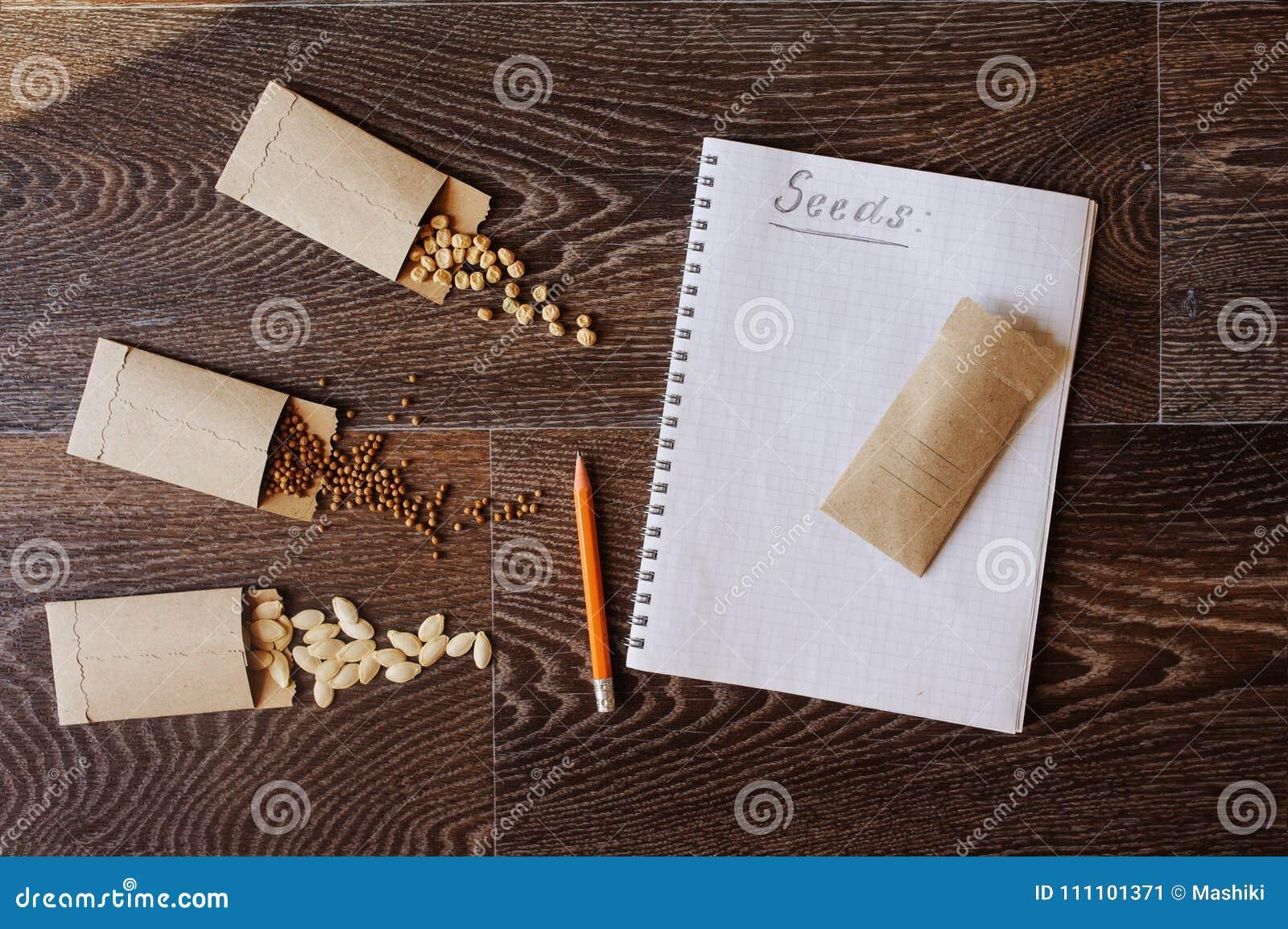 Trädgårds- grönsakfrö i handgjorda kuvert: zuccini eller pumpa